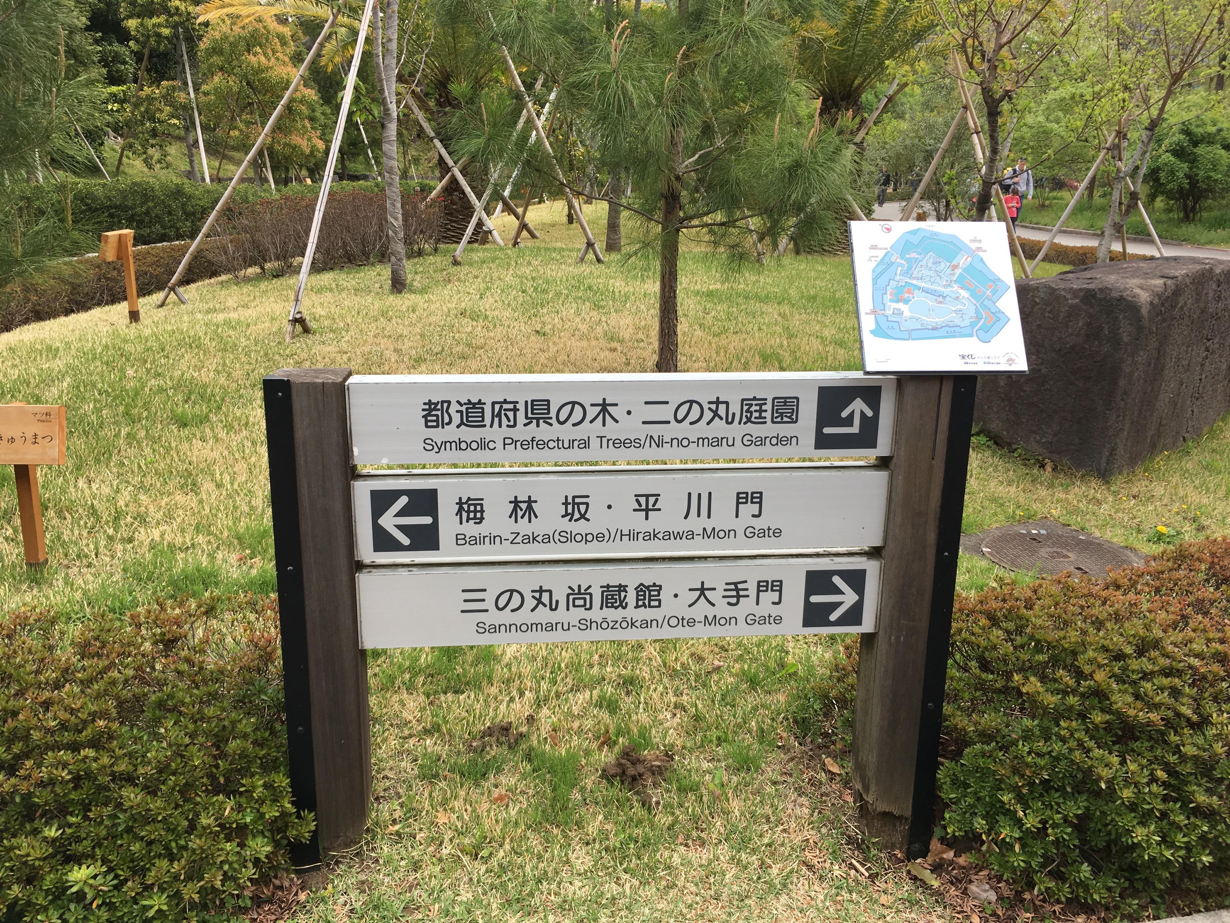 都道府県の木・二の丸庭園