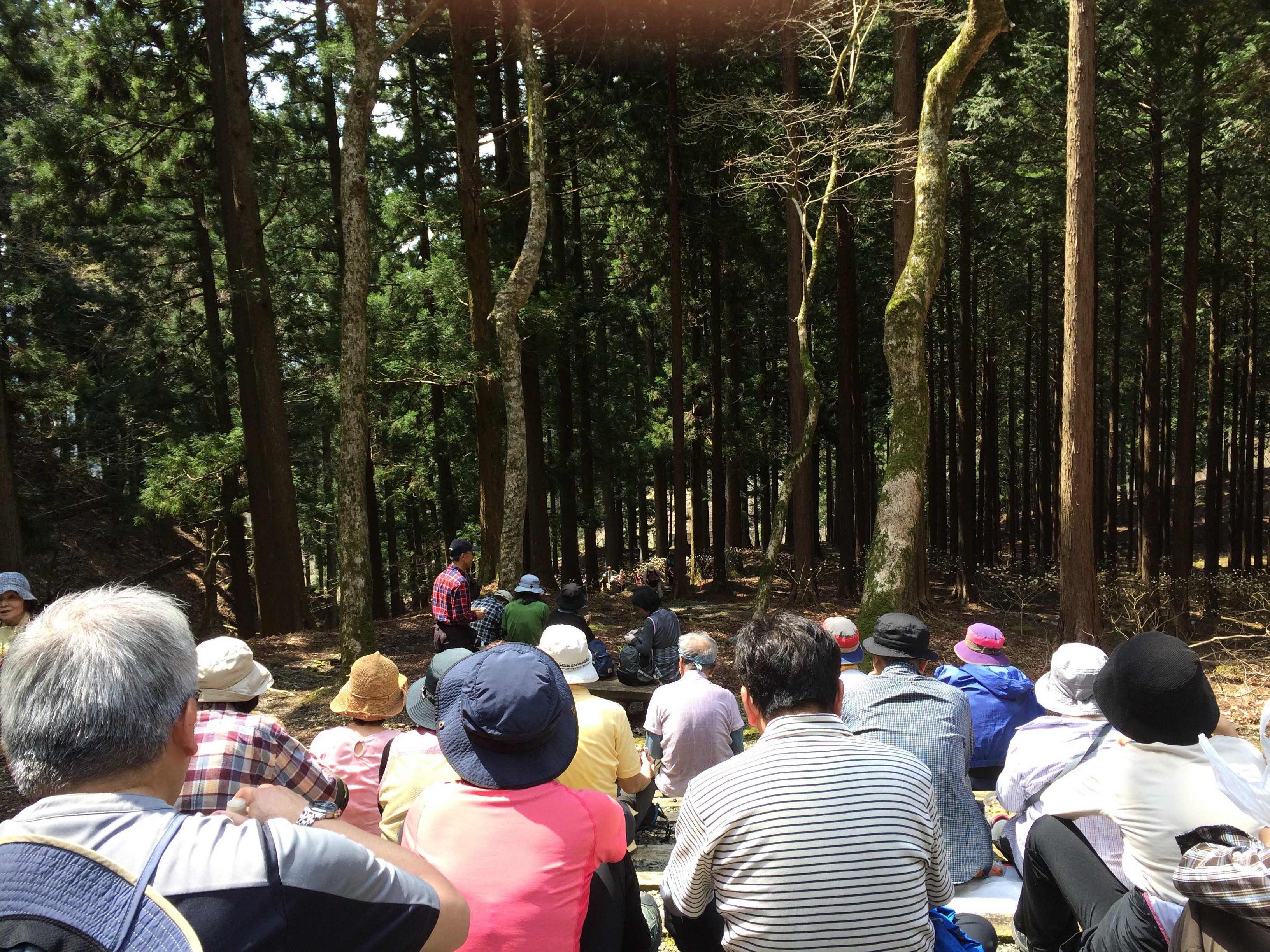 西丹沢県民の森(東屋)