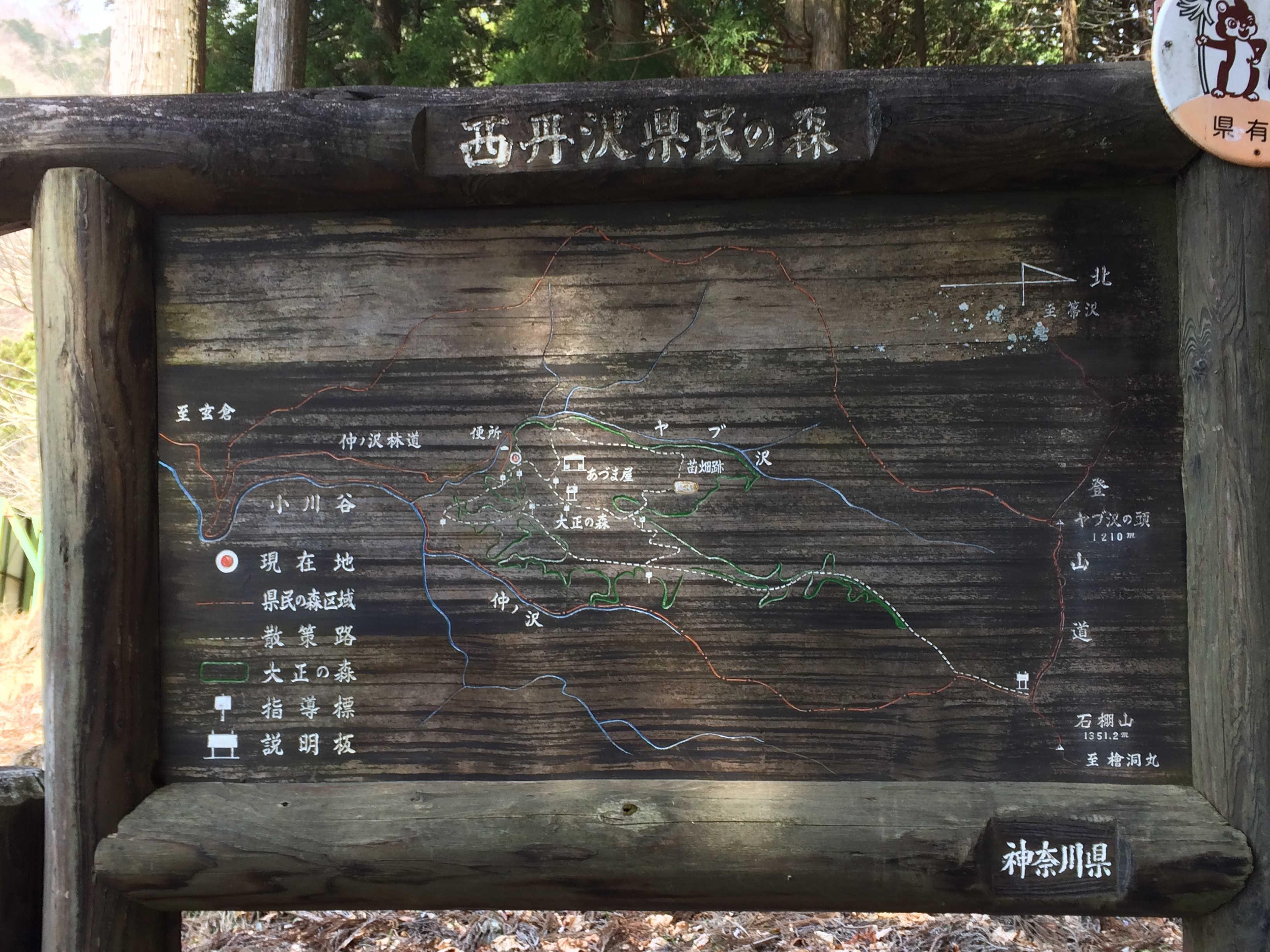 西丹沢県民の森