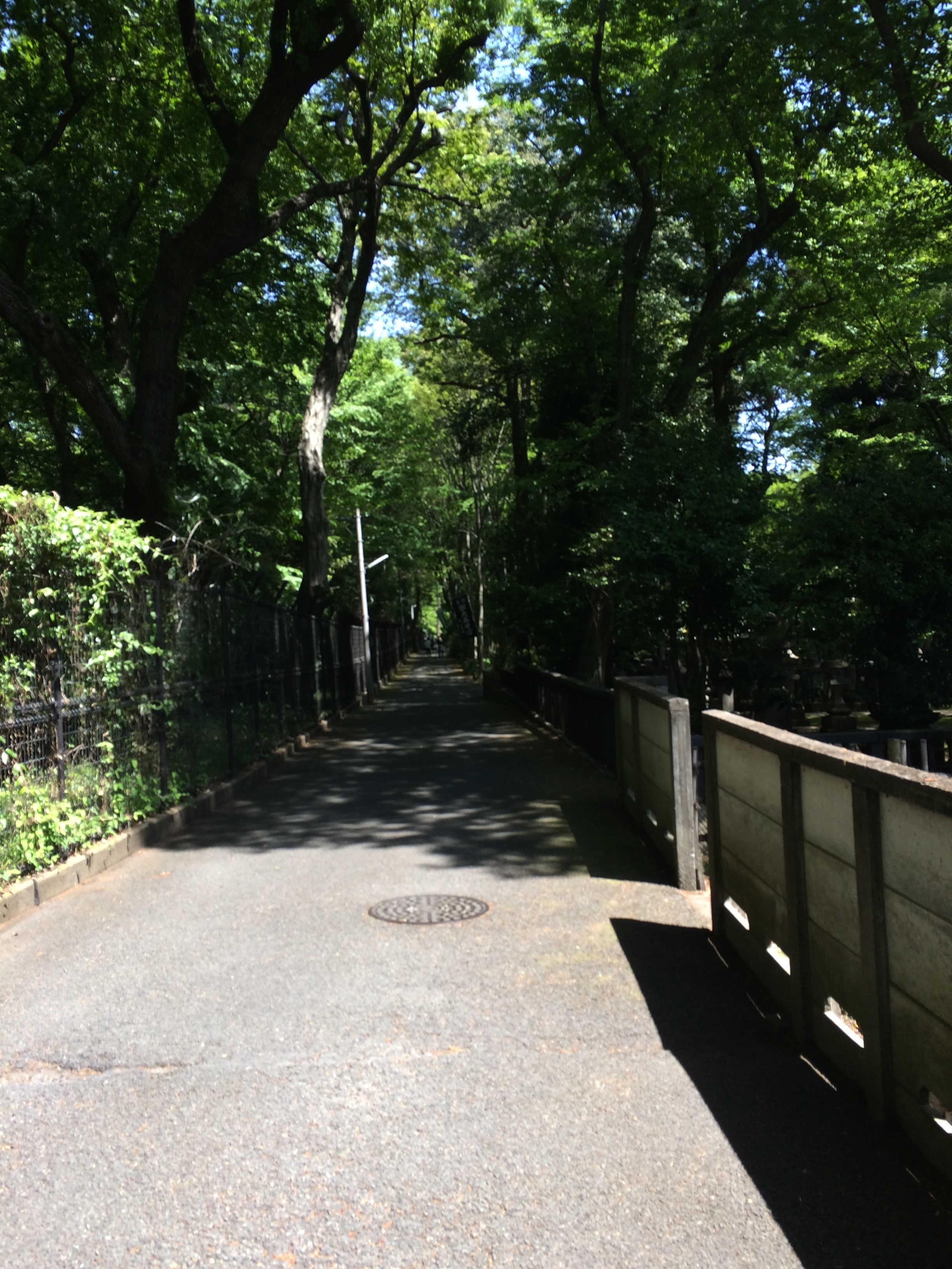 神代植物公園→深大寺