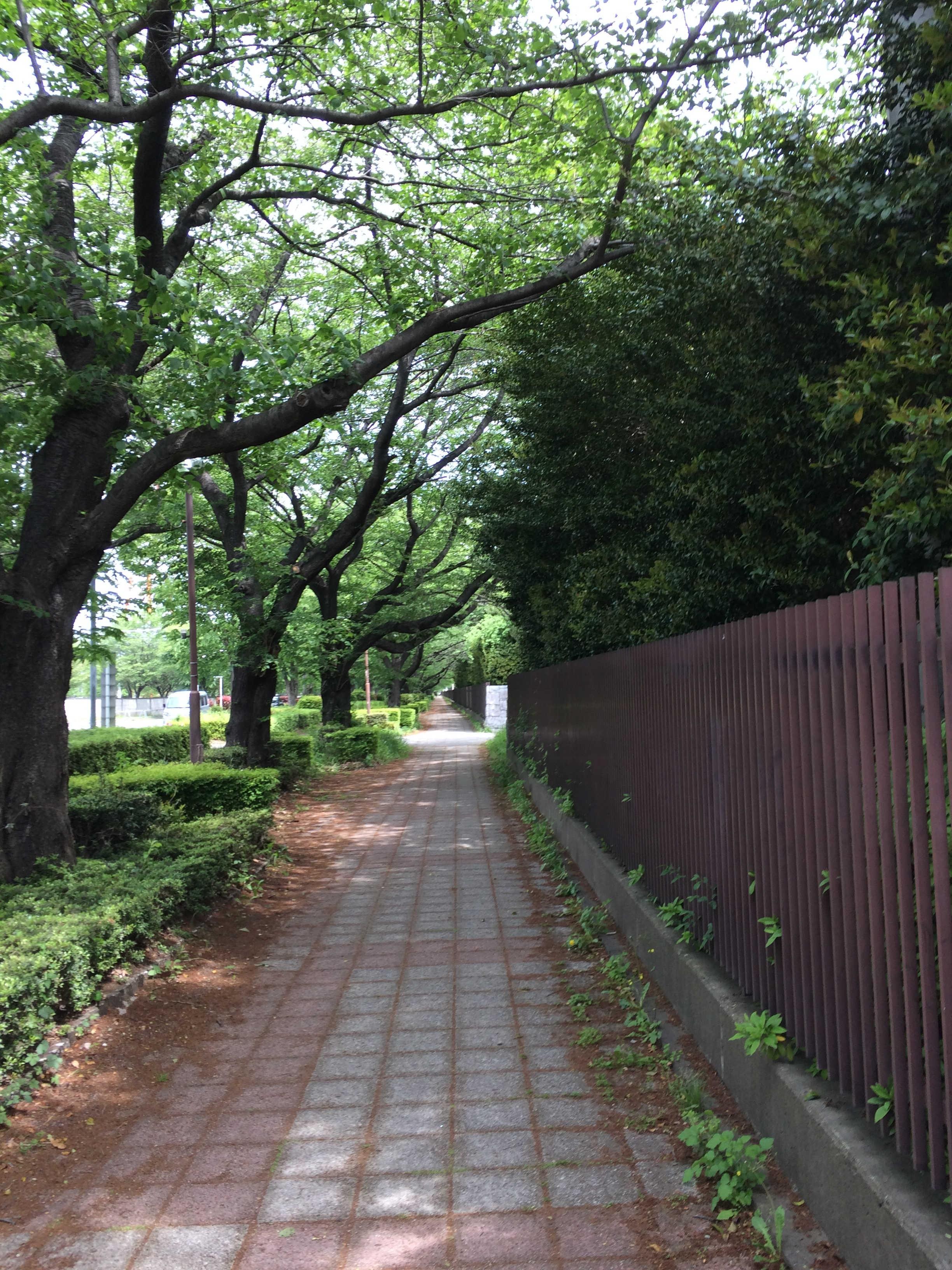 東京都道・埼玉県道108号東京朝霞線