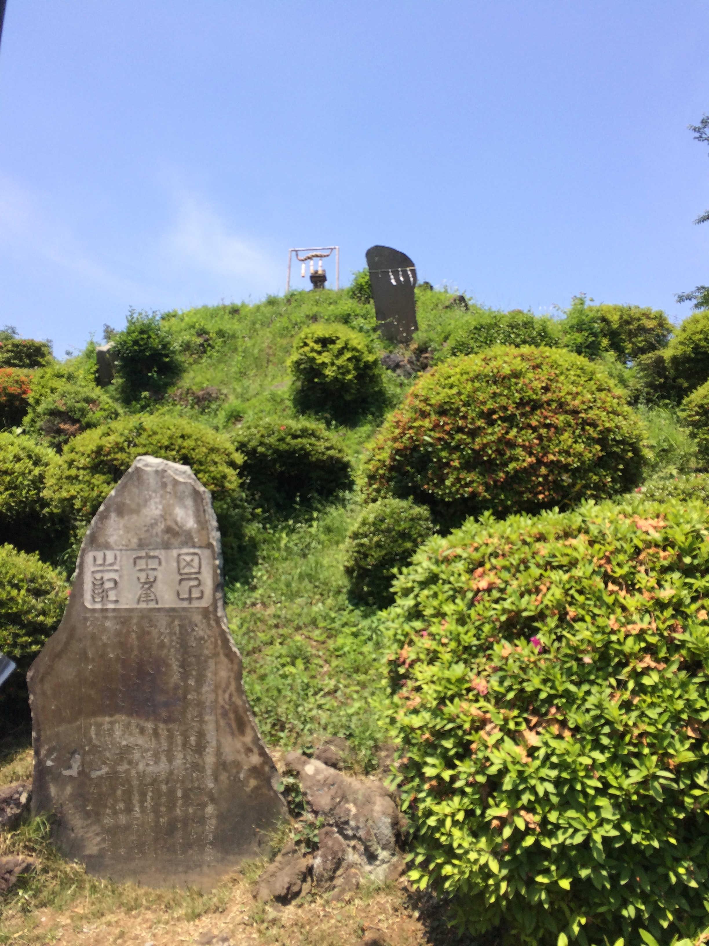 敷島神社(田子山富士塚)