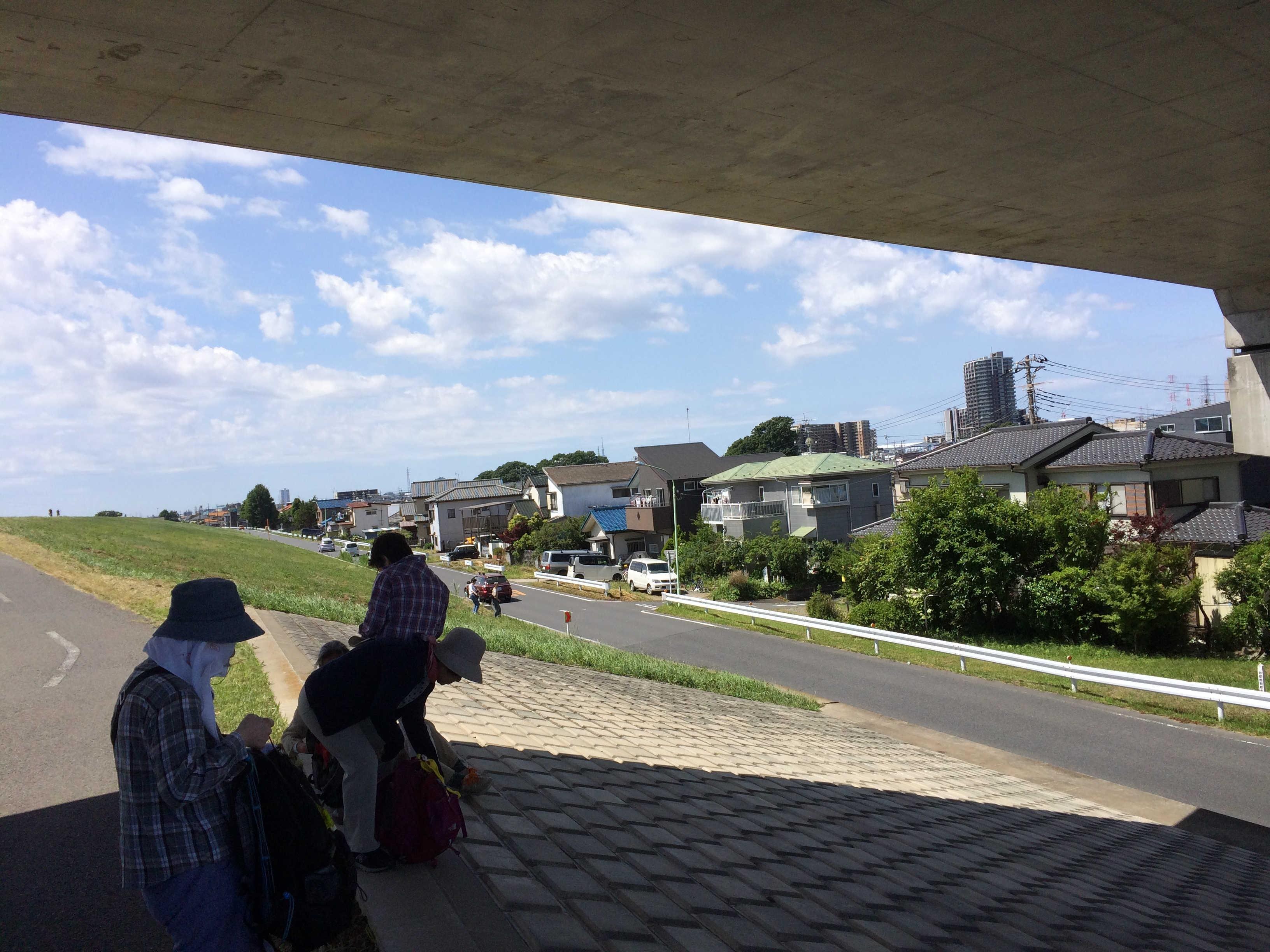 つくばエクスプレスガード下(江戸川堤健康の道)