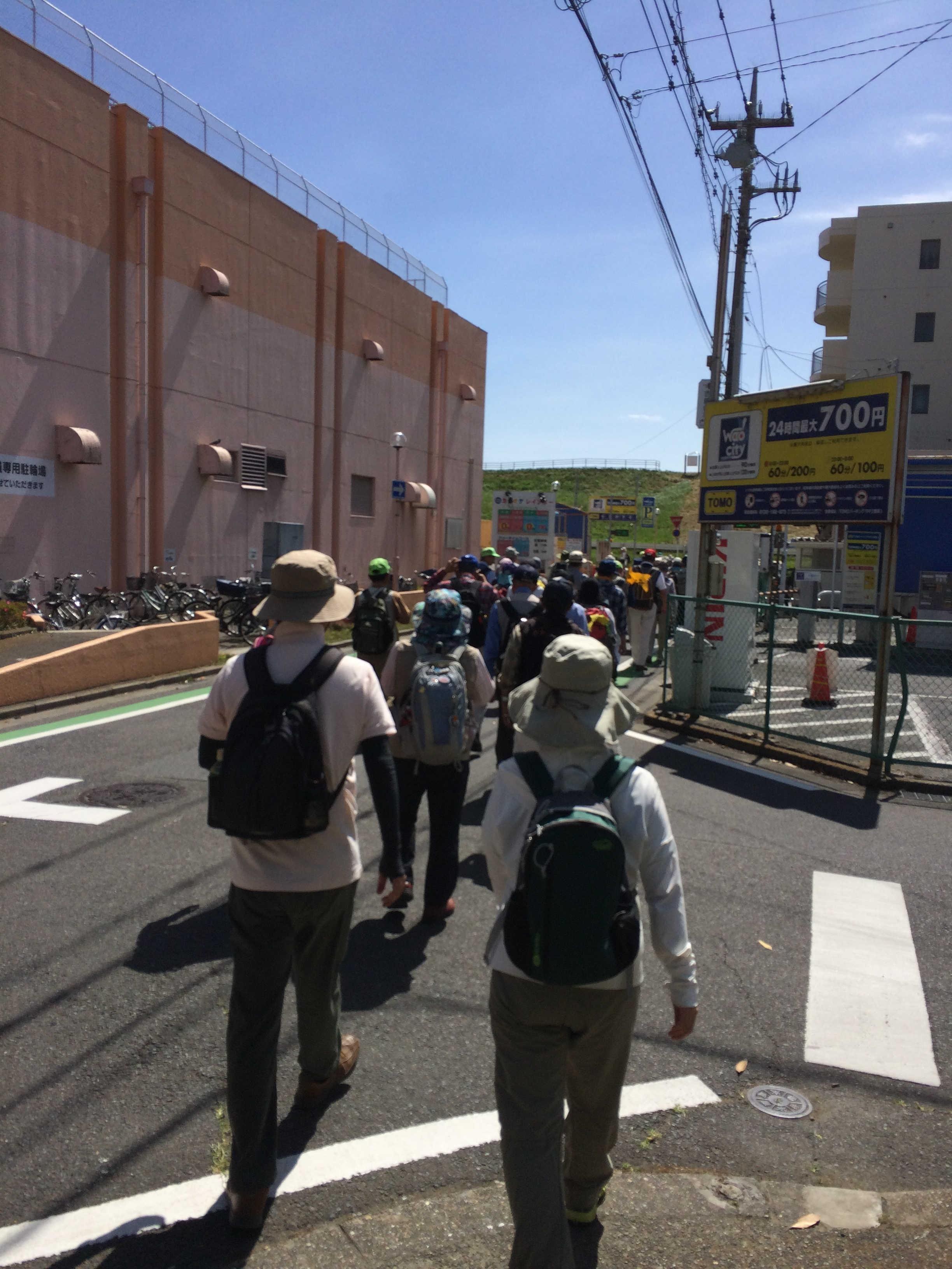 ひまわり公園→江戸川堤健康の道