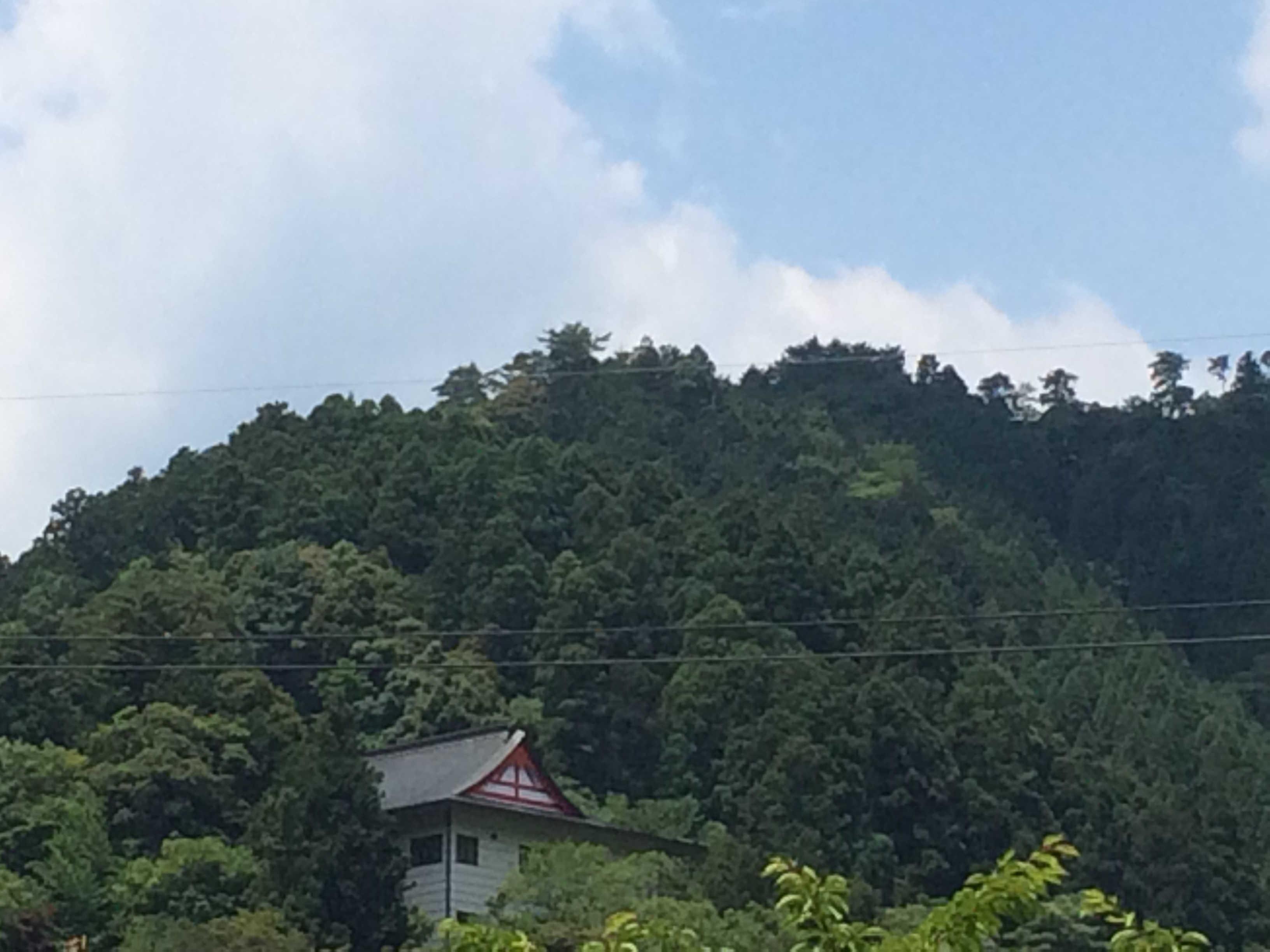 太皷谷稲成神社(津和野・殿町通り)