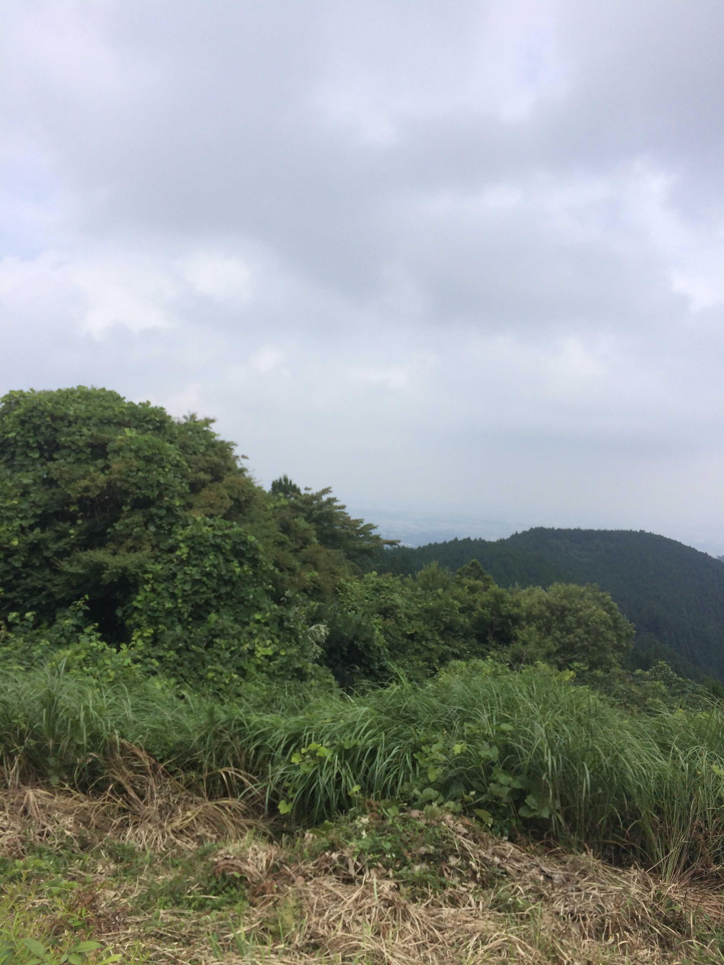 小仏城山→一丁平向