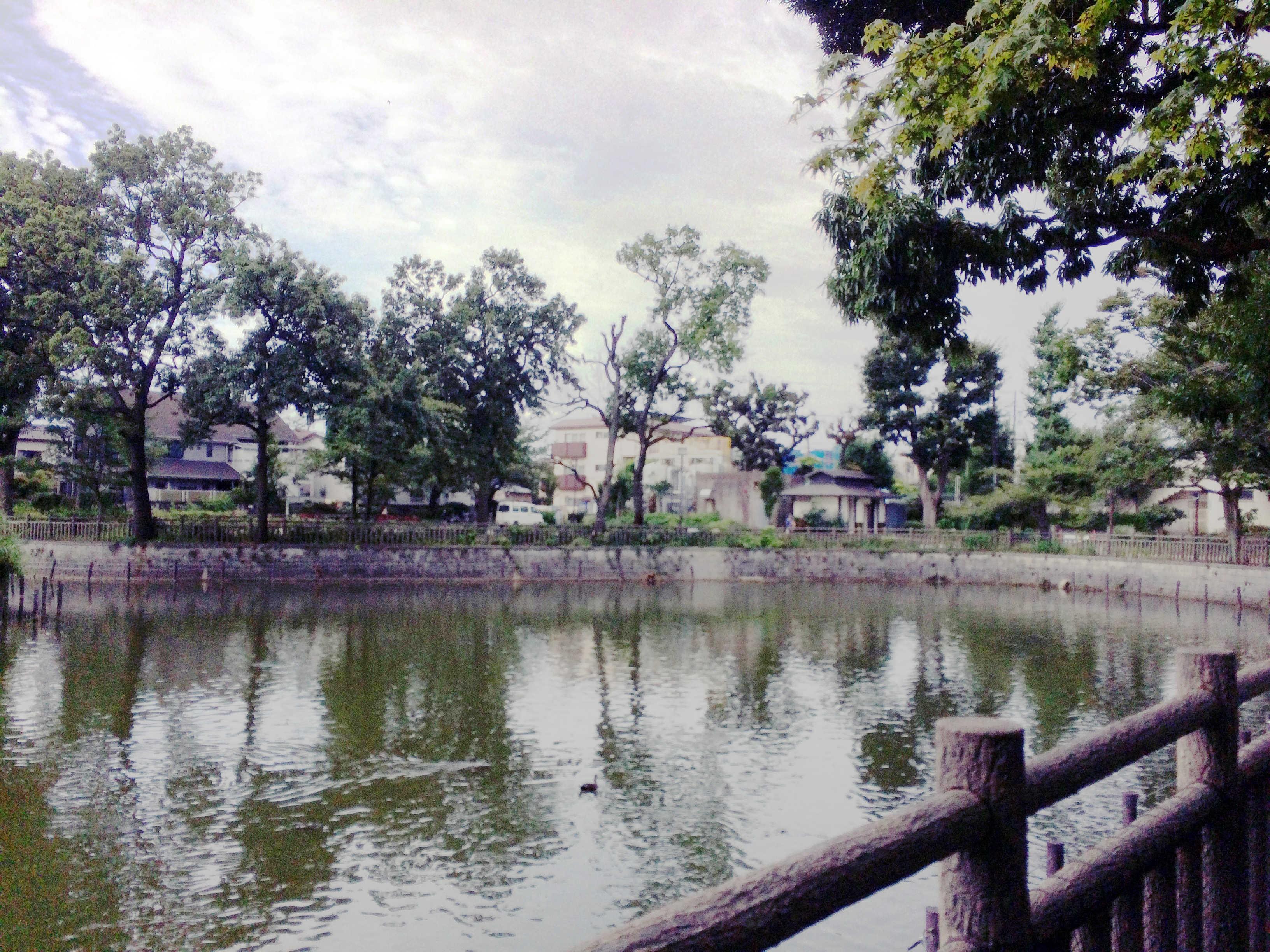 碑文谷公園(スタート)