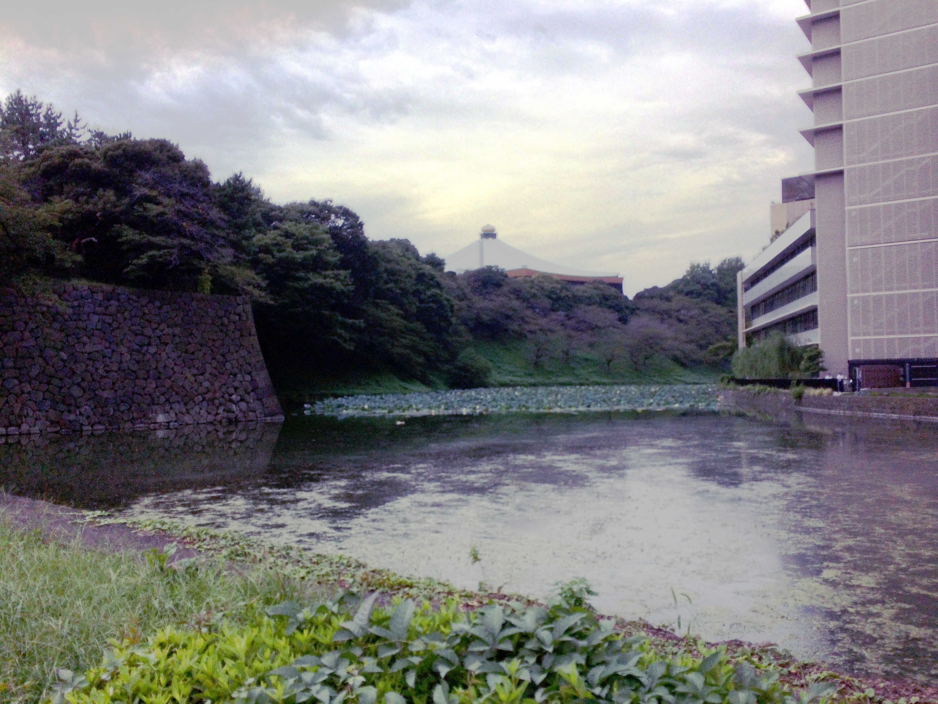 清水門から武道館