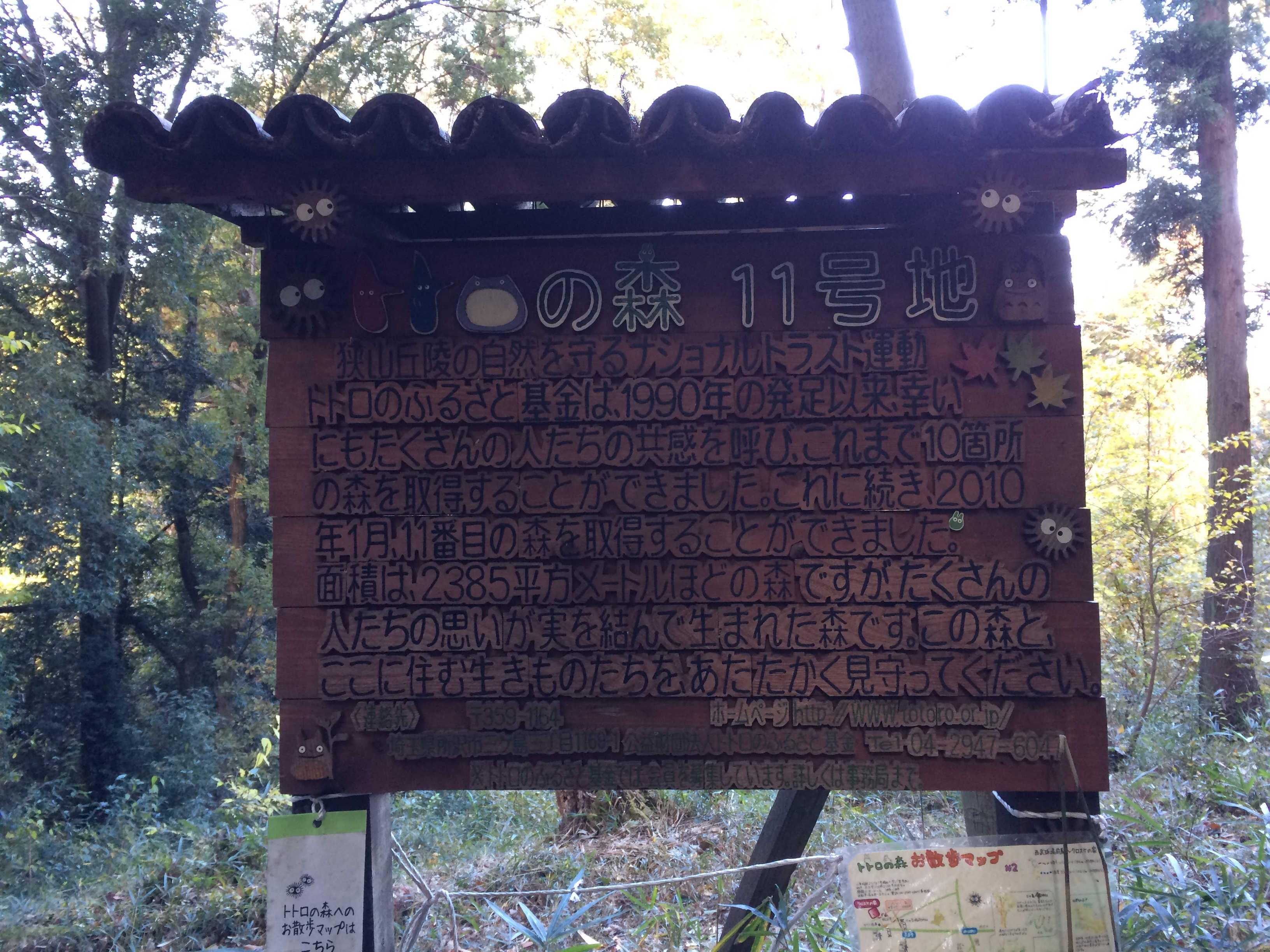 トトロの森・11号地