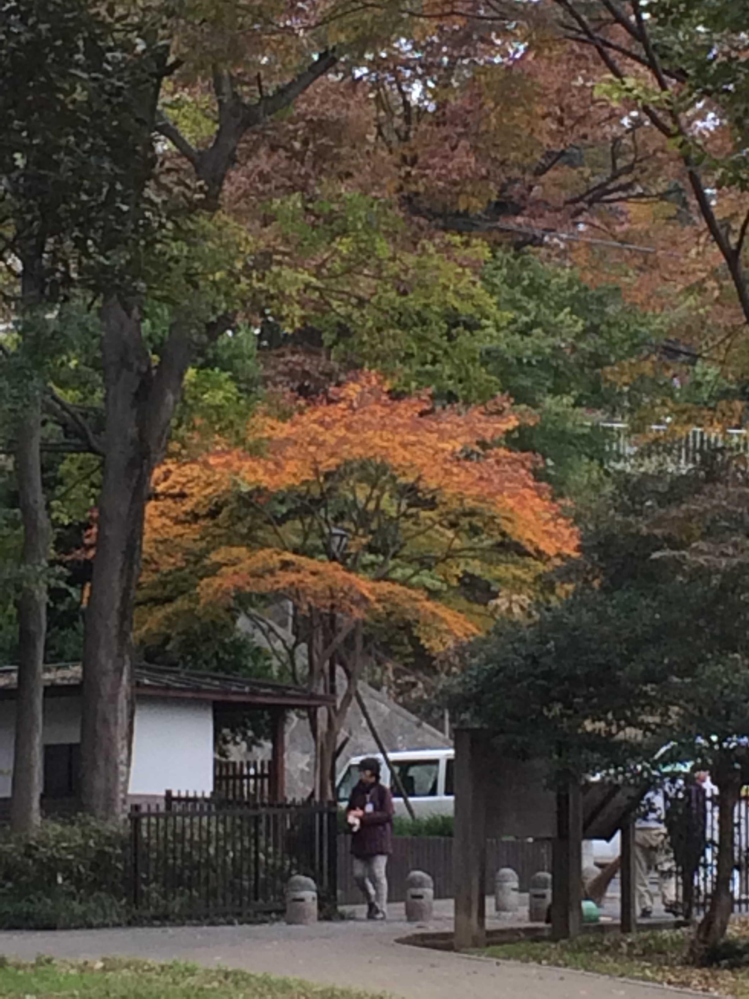 仙波川岸史跡公園