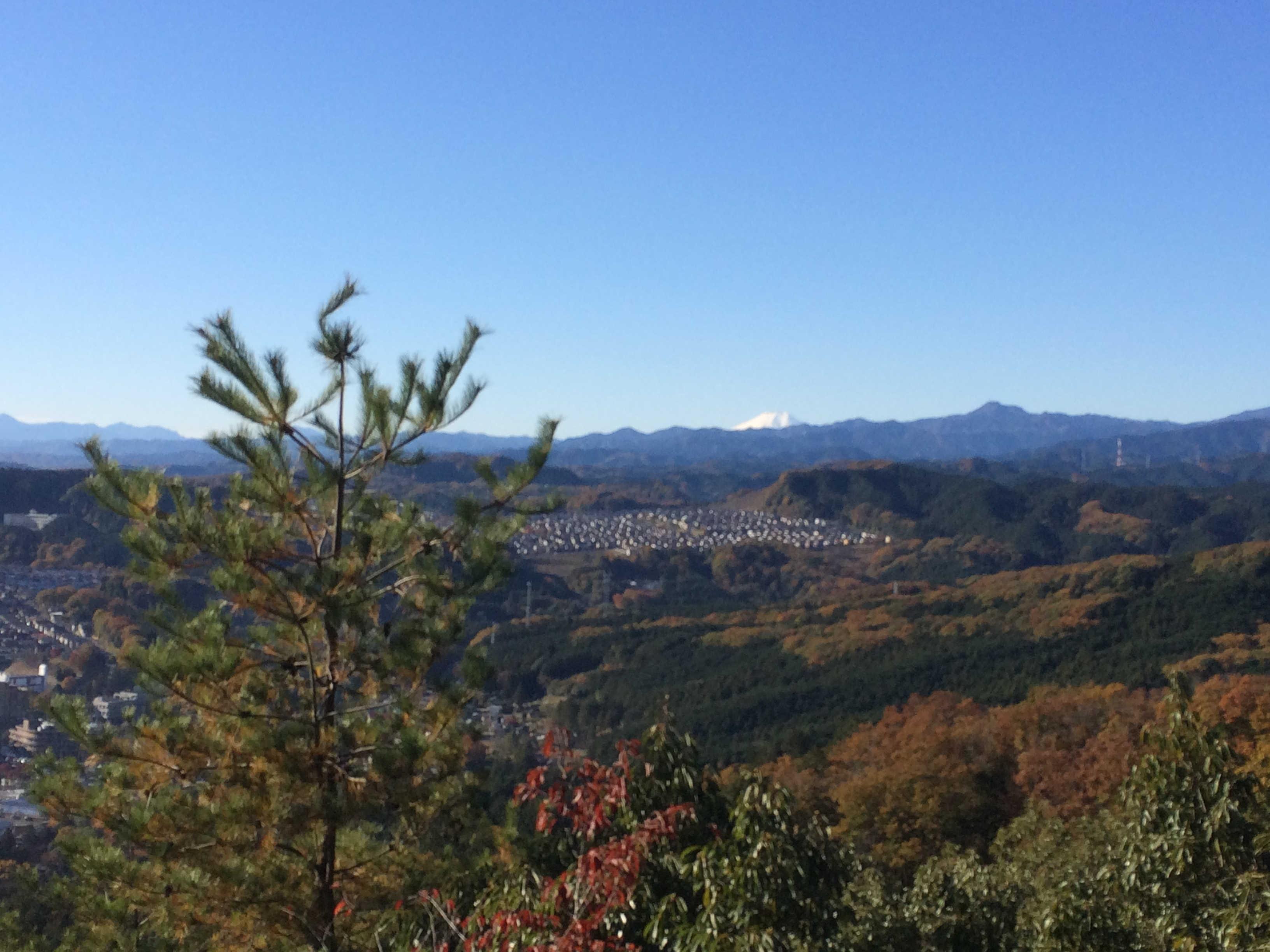日和田山頂