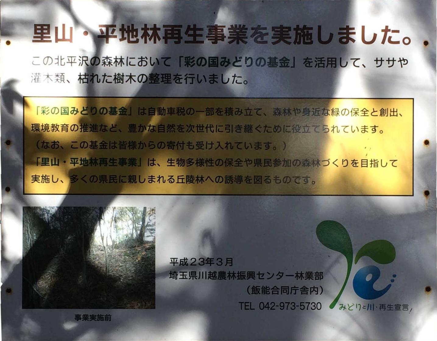 里山・平地林再生事業を実施しました。