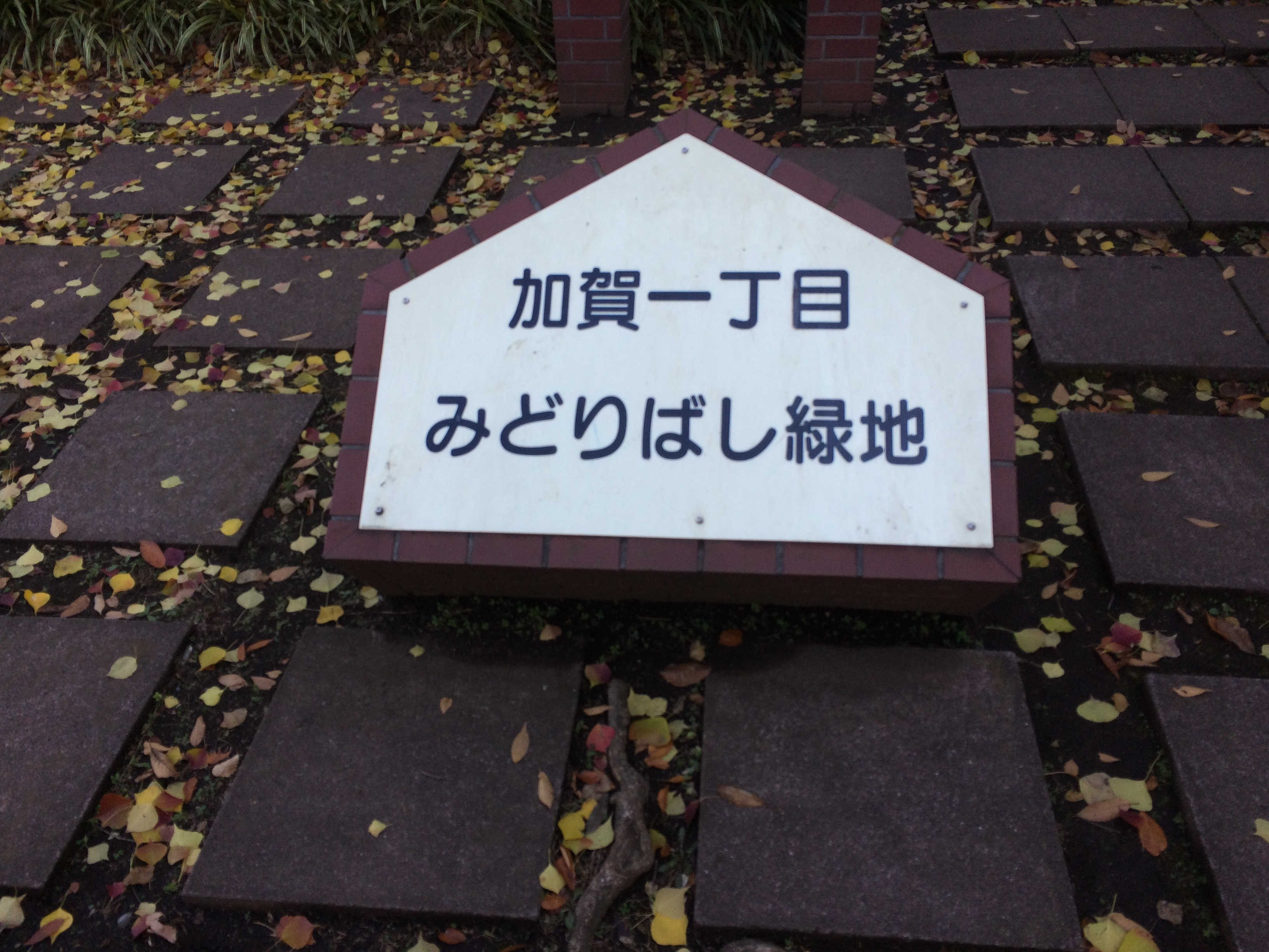 加賀一丁目みどりばし緑地