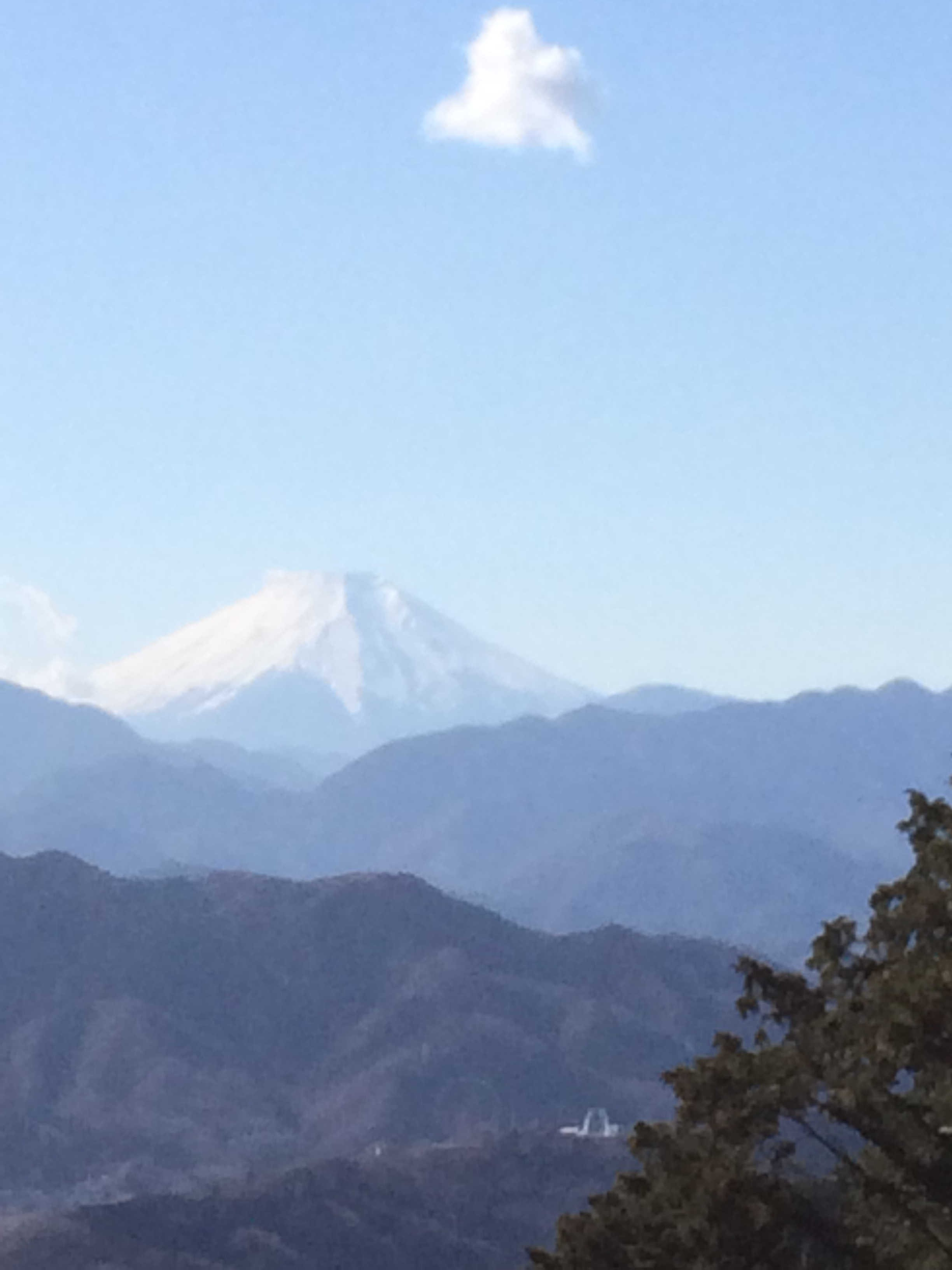 もみじ台から富士山を望む