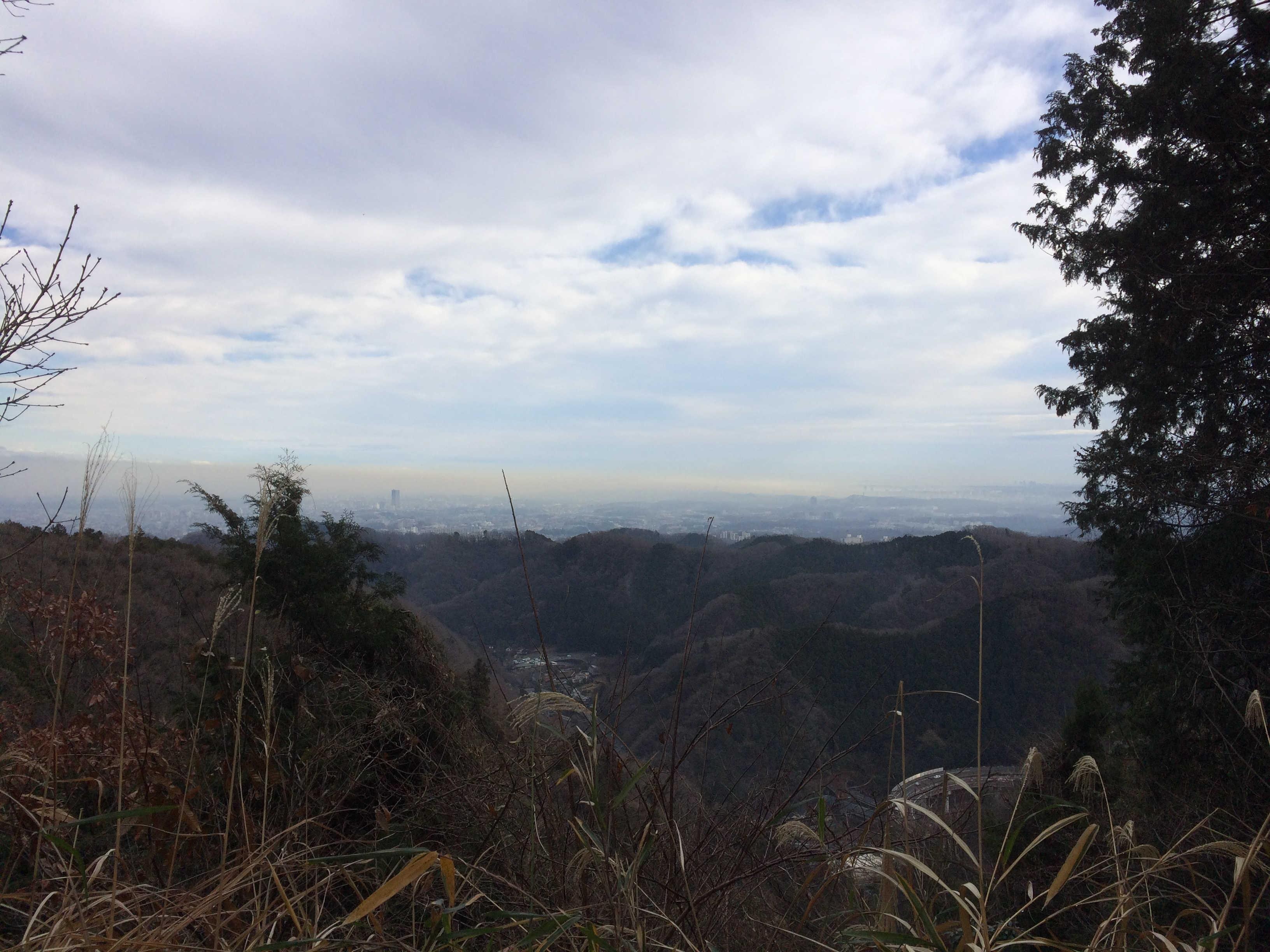稲荷山コースから八王子市内を望む
