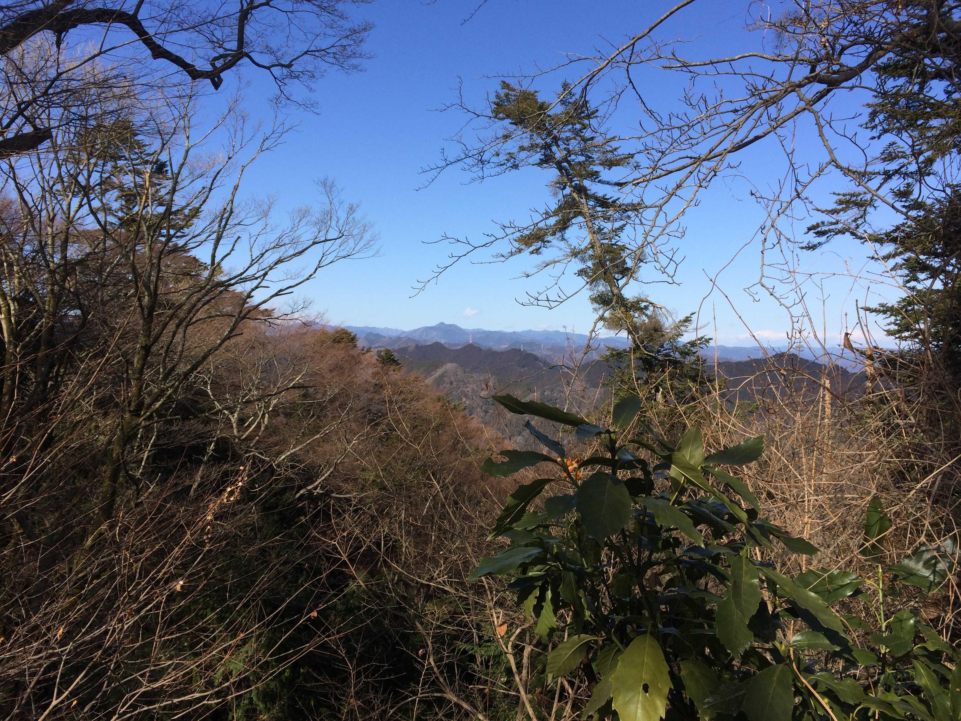 稲荷山コースから御岳山を望む