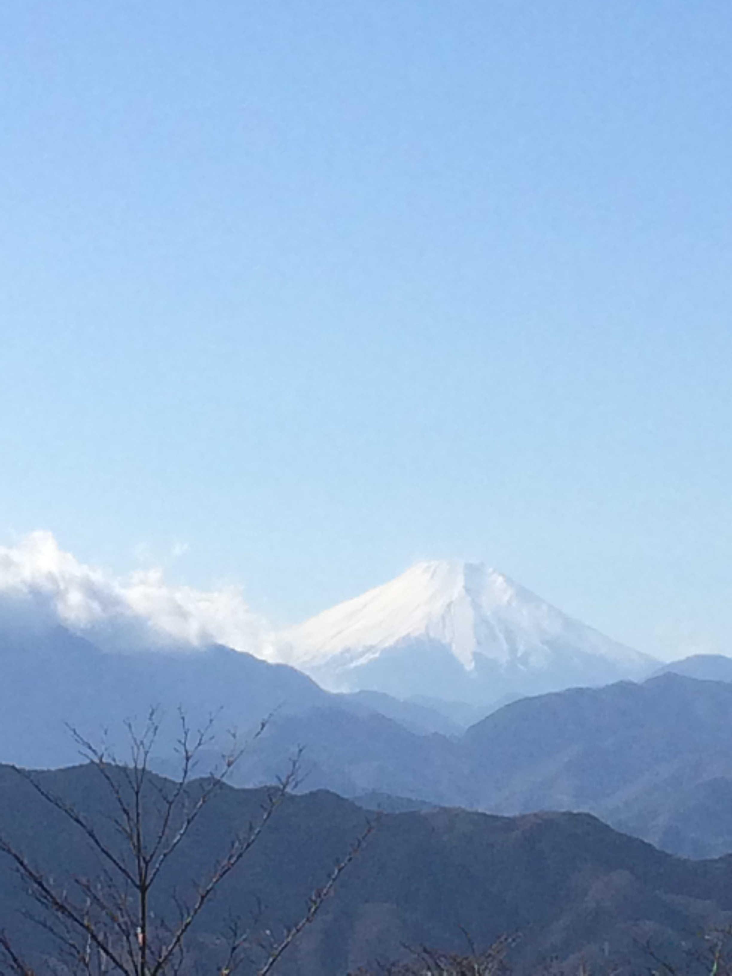 高尾山山頂から富士山を望む