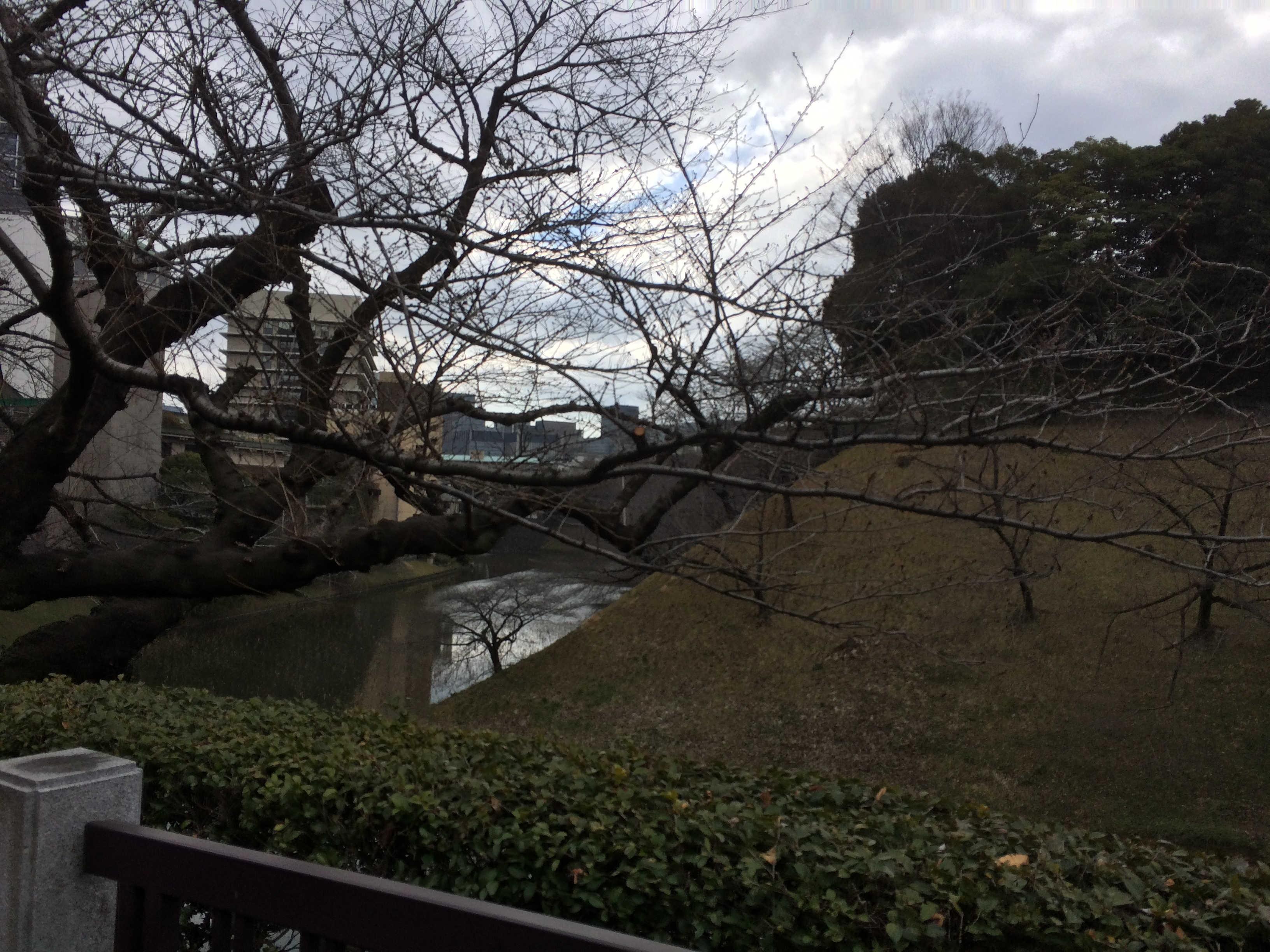 田安門から清水門を望む