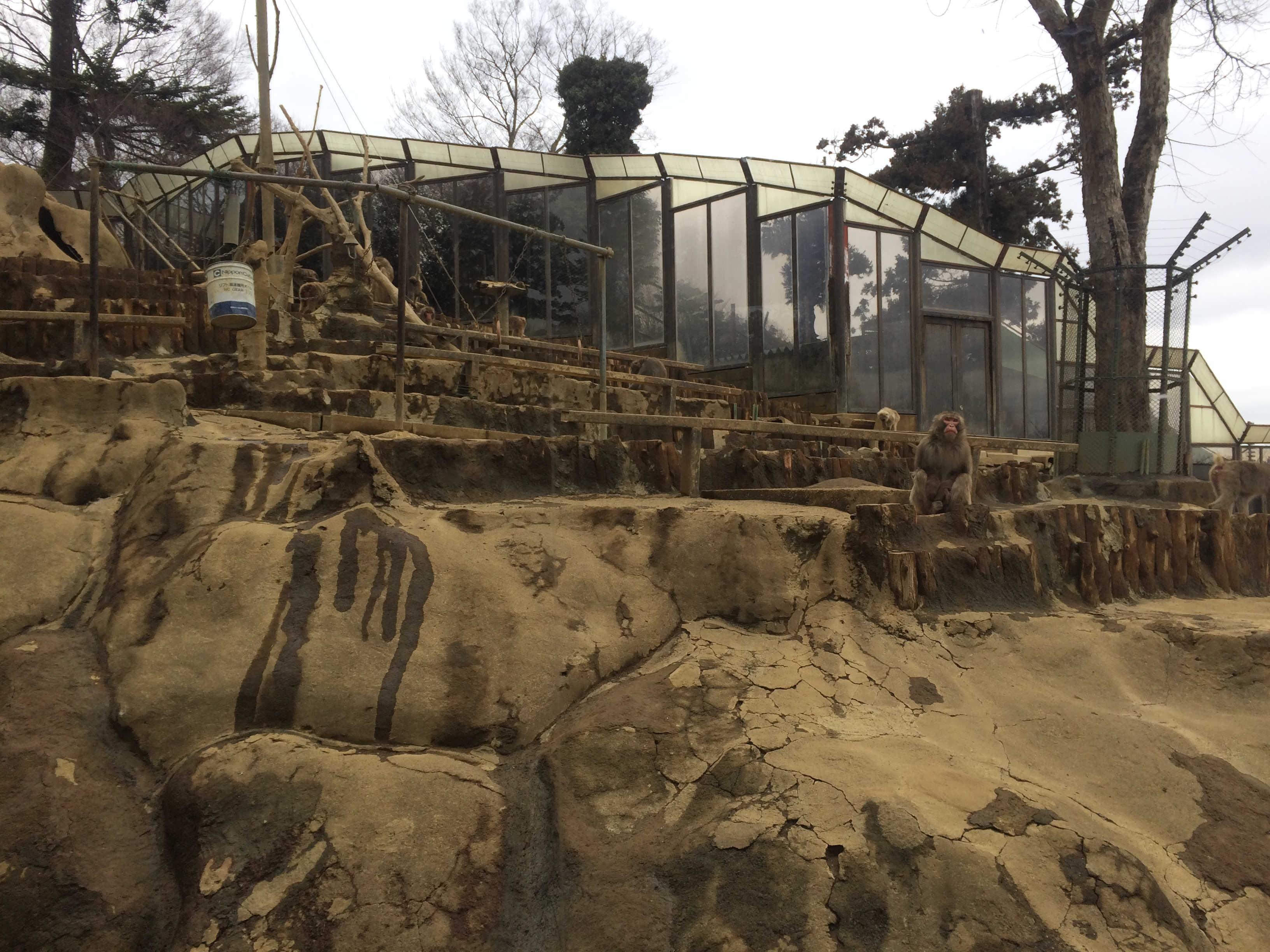 高尾山さる園
