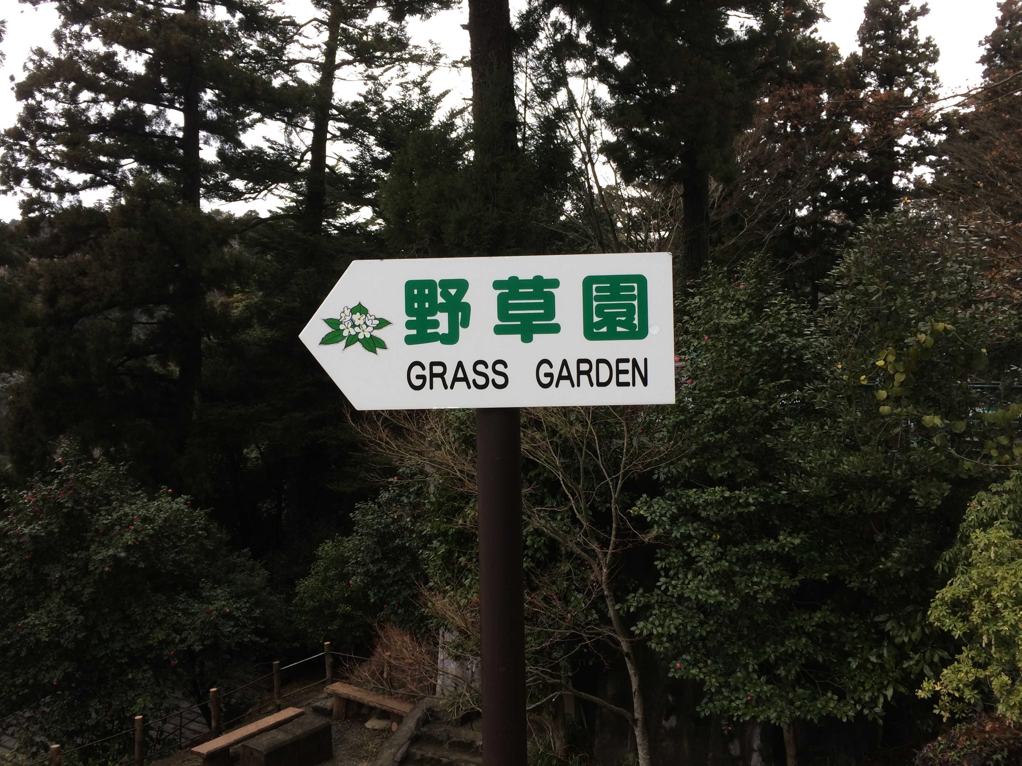 高尾山野草園