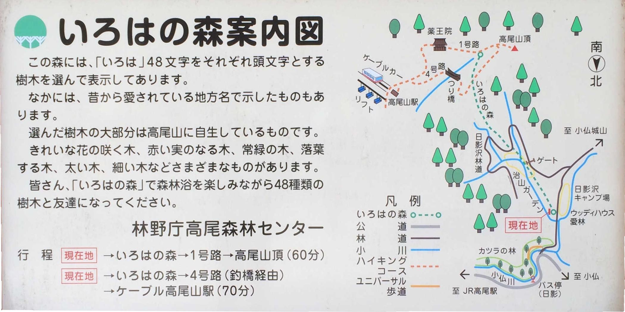 いろはの森案内図