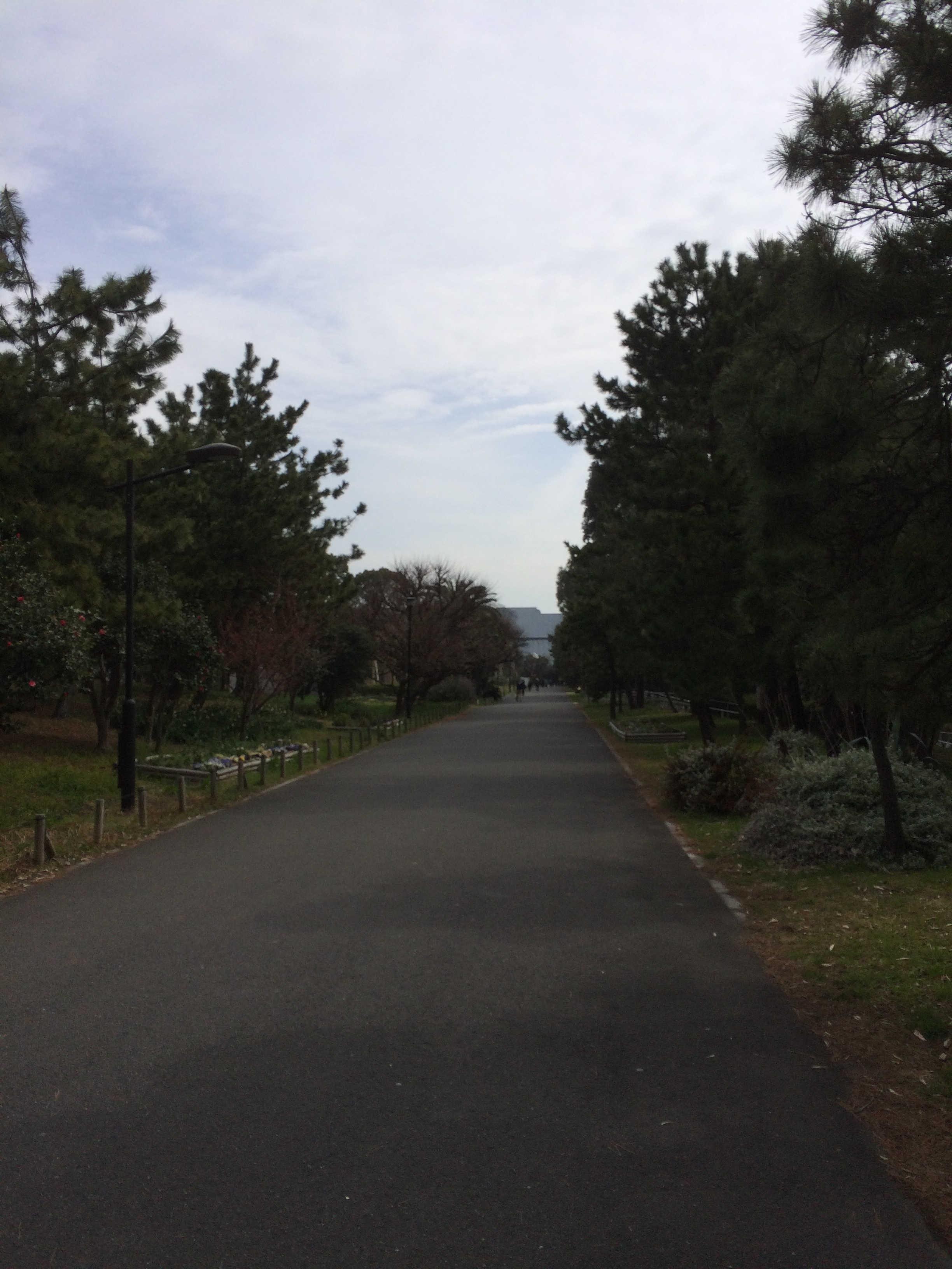 夢の島運動公園