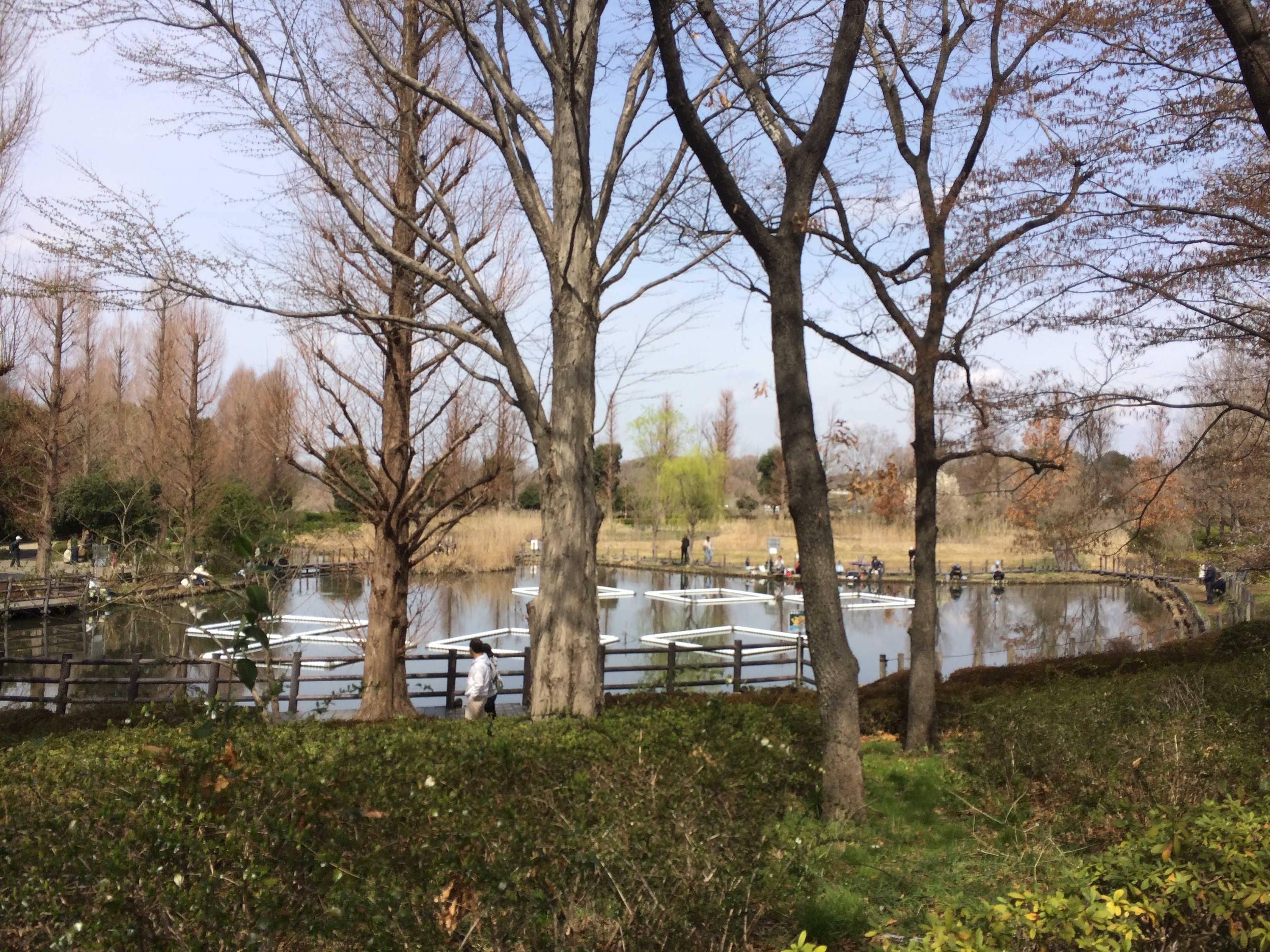 川口自然公園前