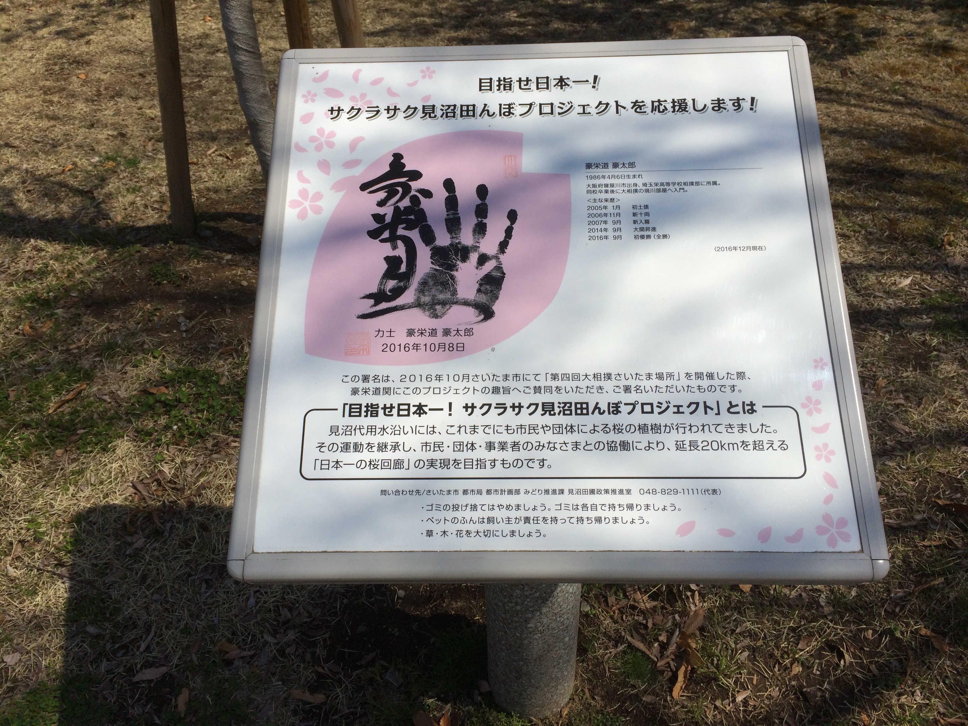 サクラサク見沼田んぼプロジェクト
