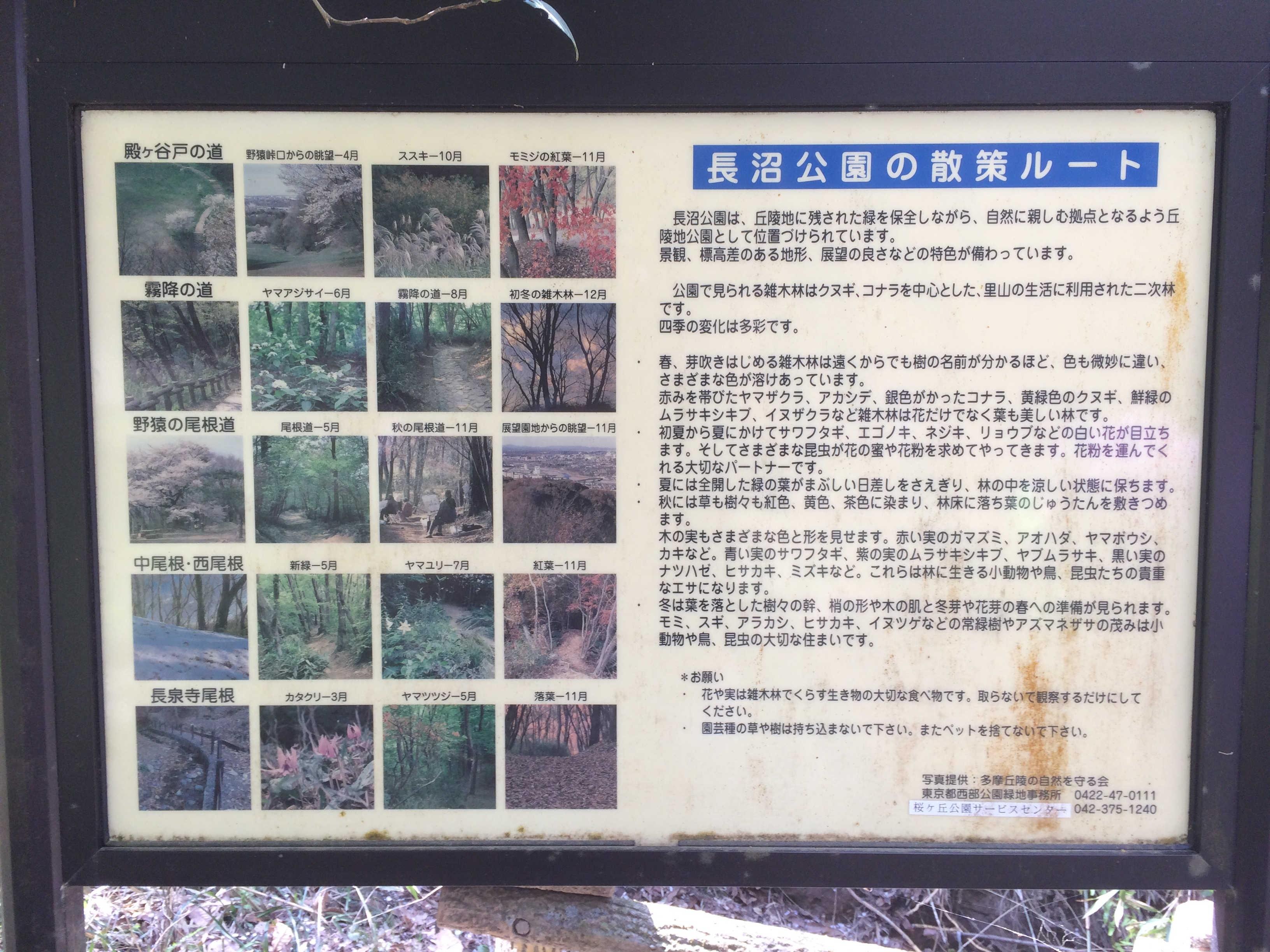長沼公園の散策ルート