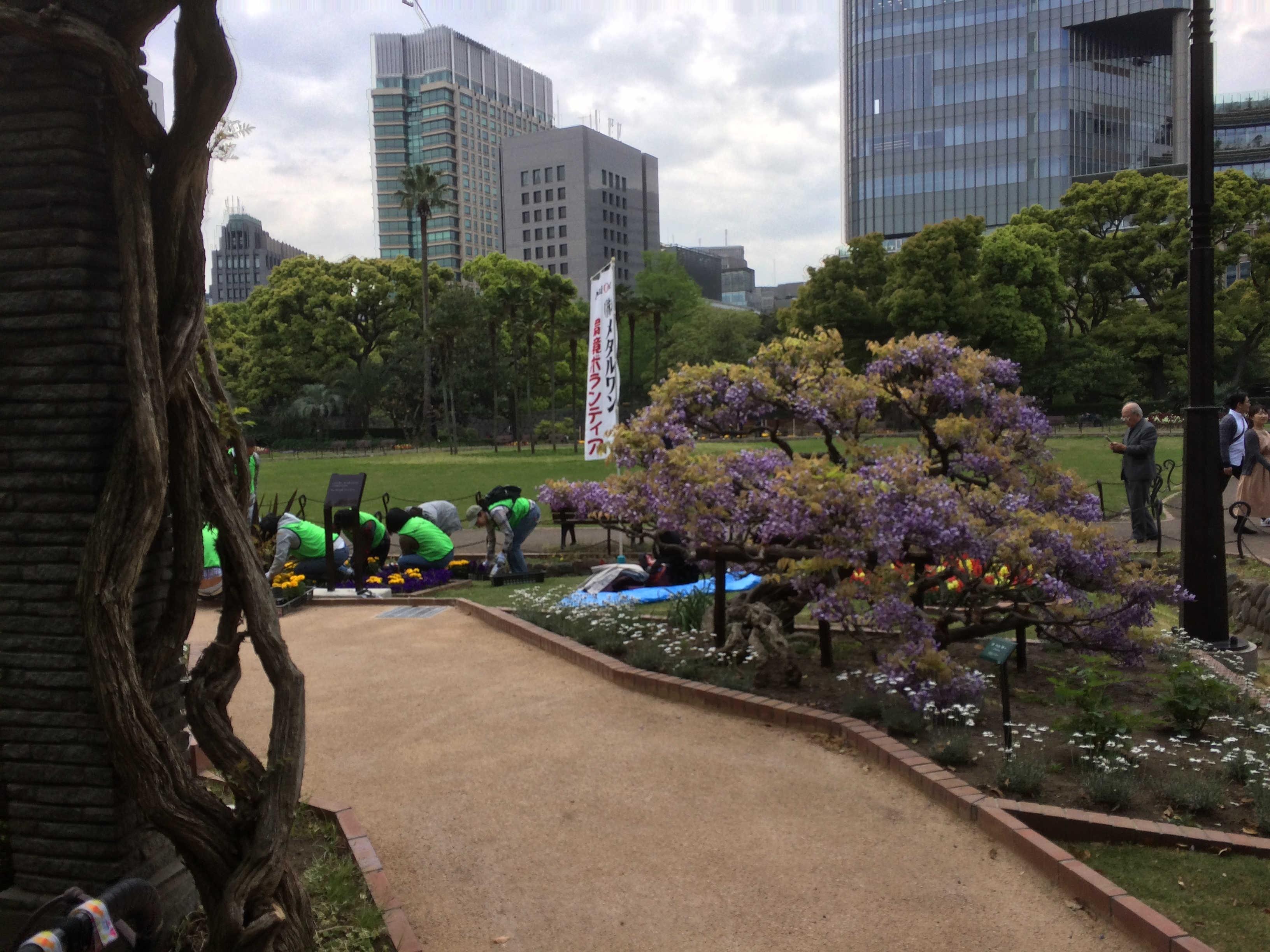 日比谷公園健康運動広場(スタート)
