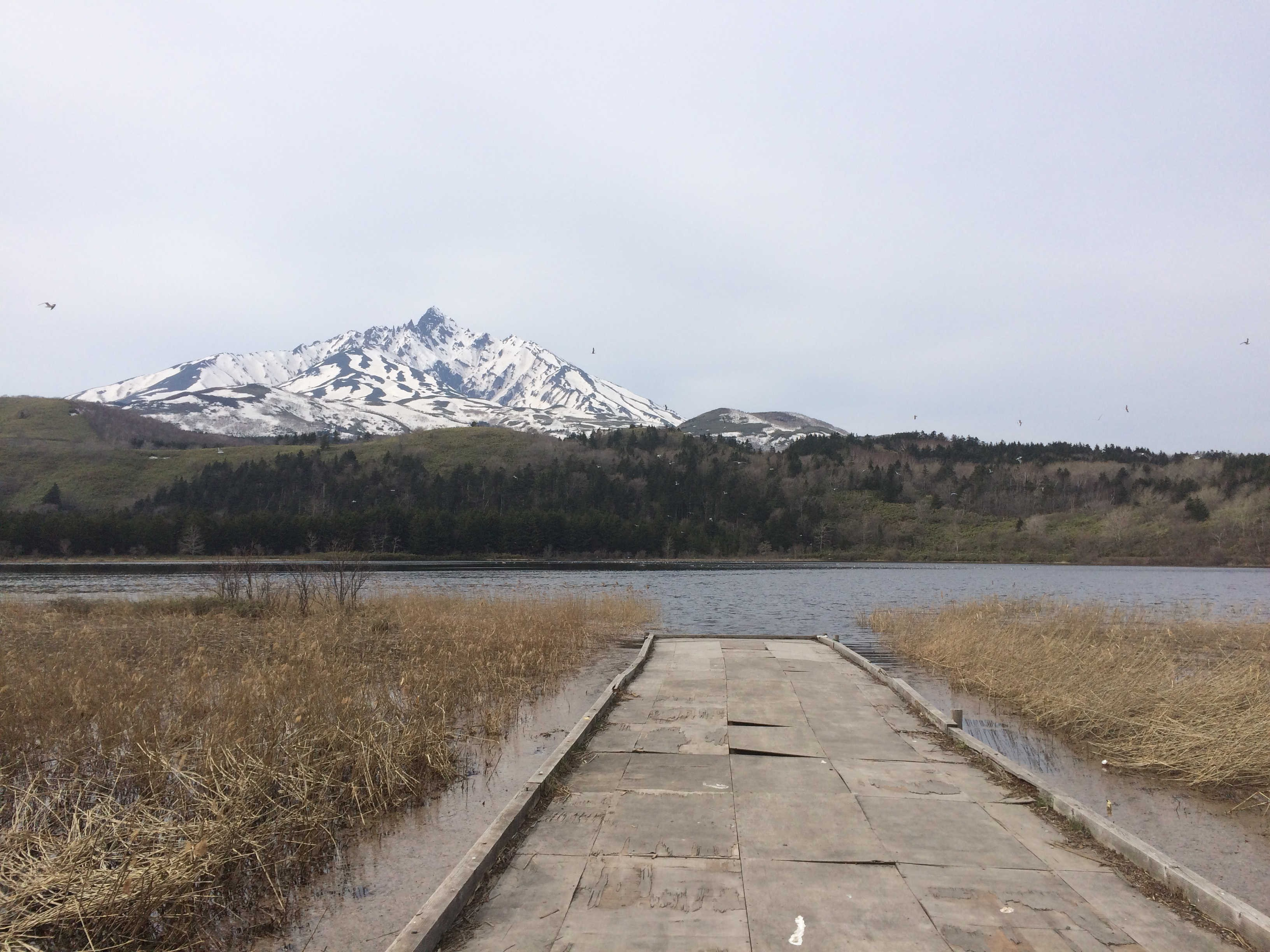 オタトマリ沼から利尻富士