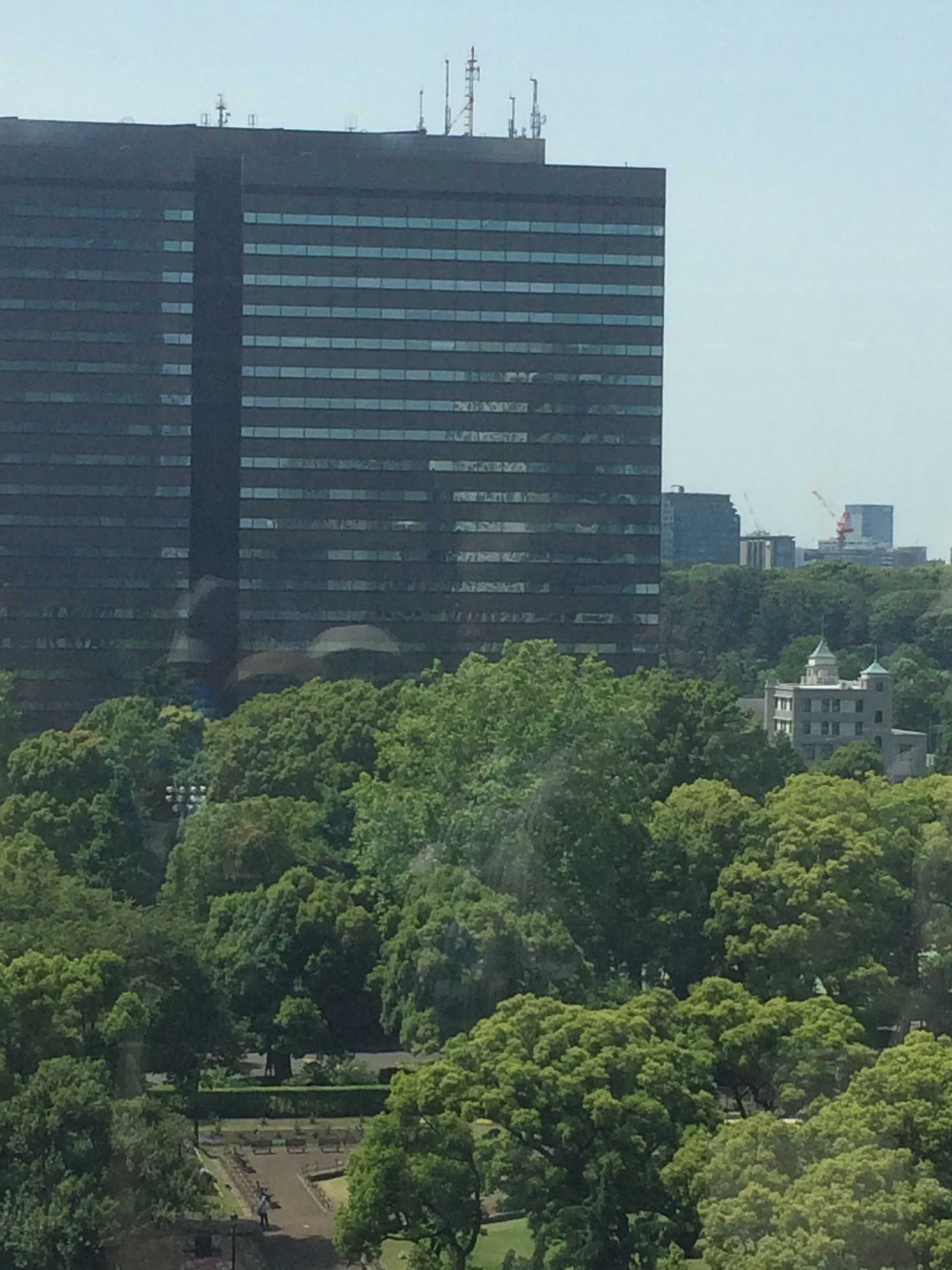 東京ミッドタウン日比谷から日比谷公園を望む