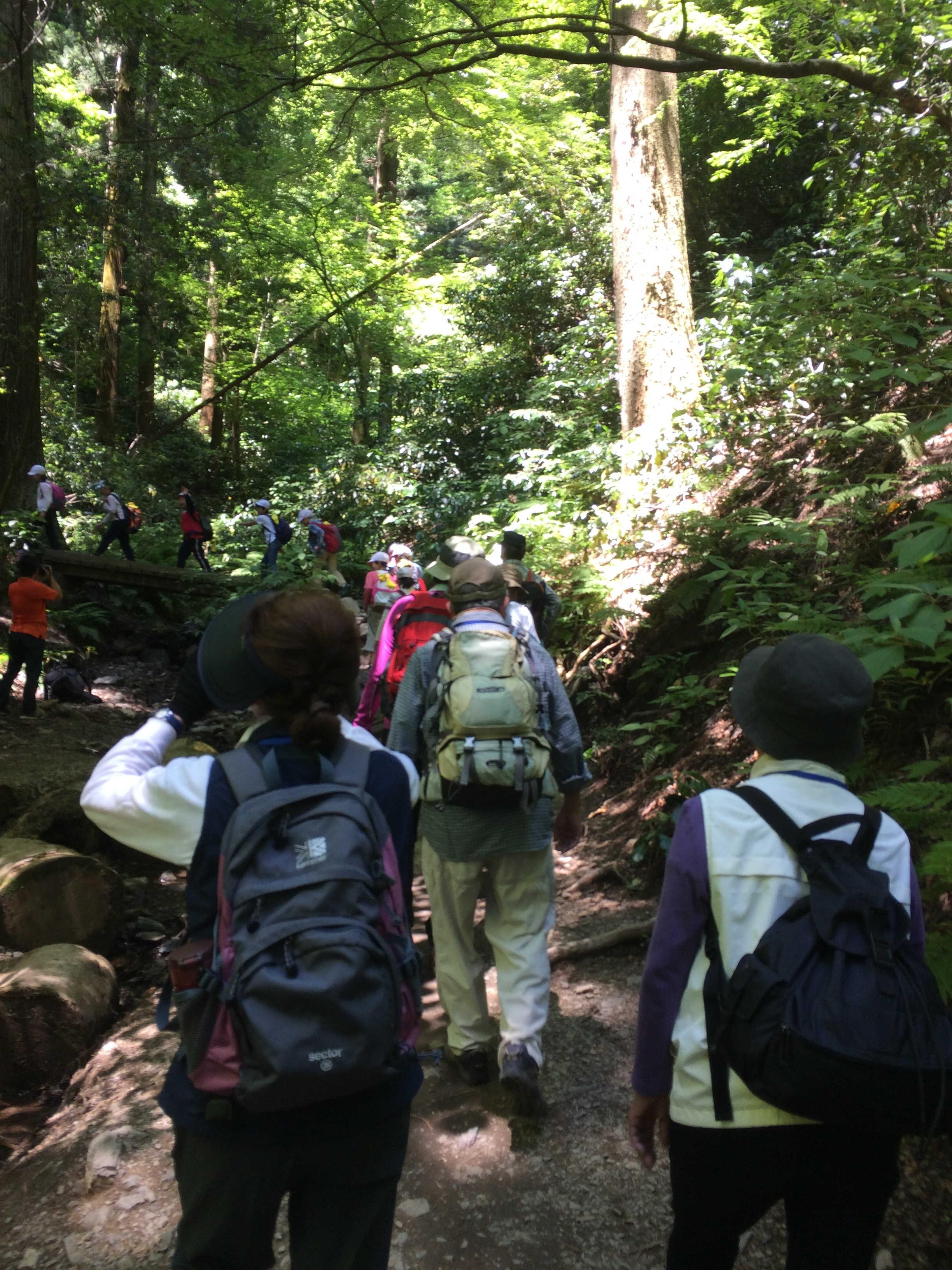 登山コース6号路