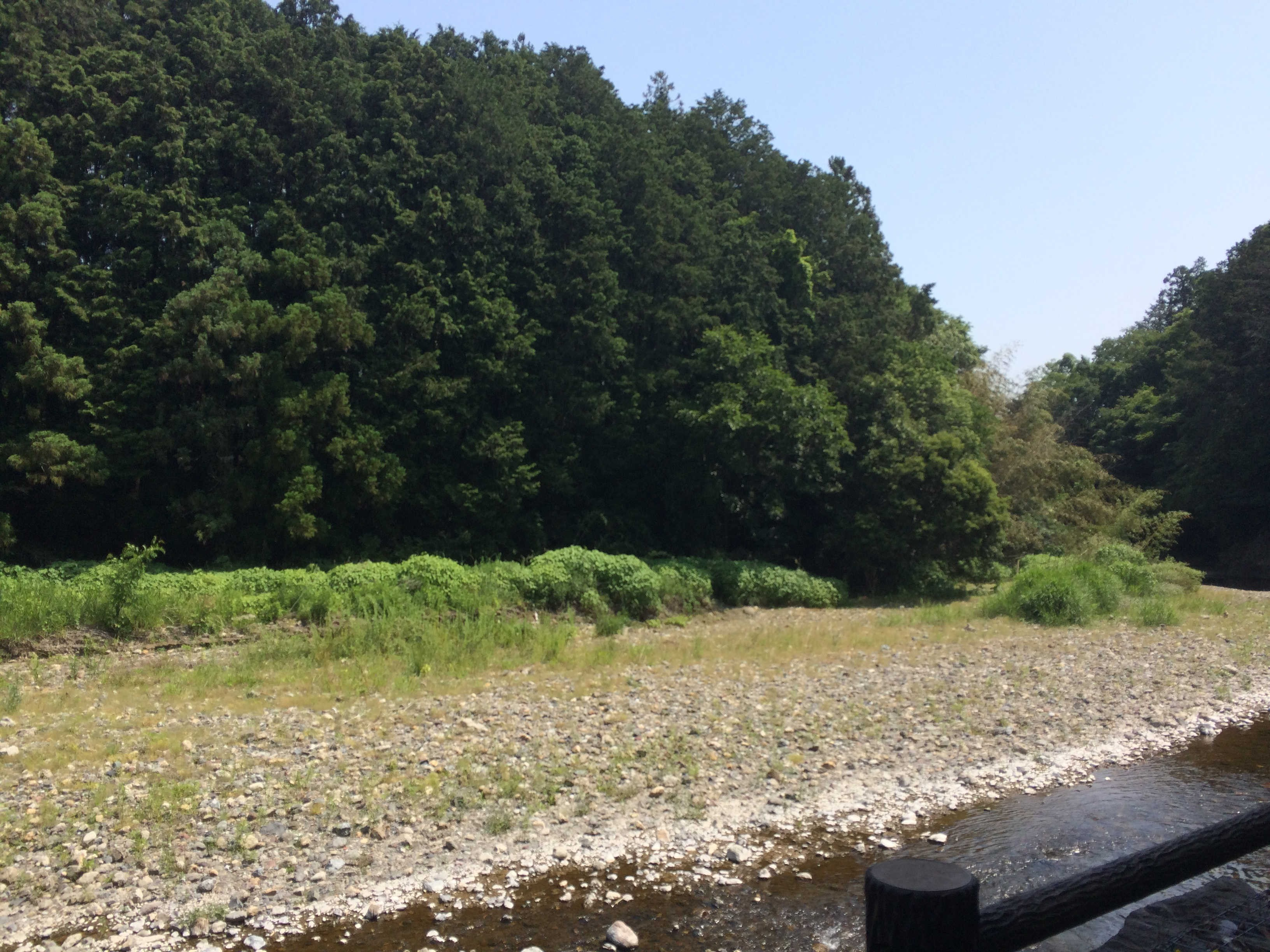 高麗川遊歩道
