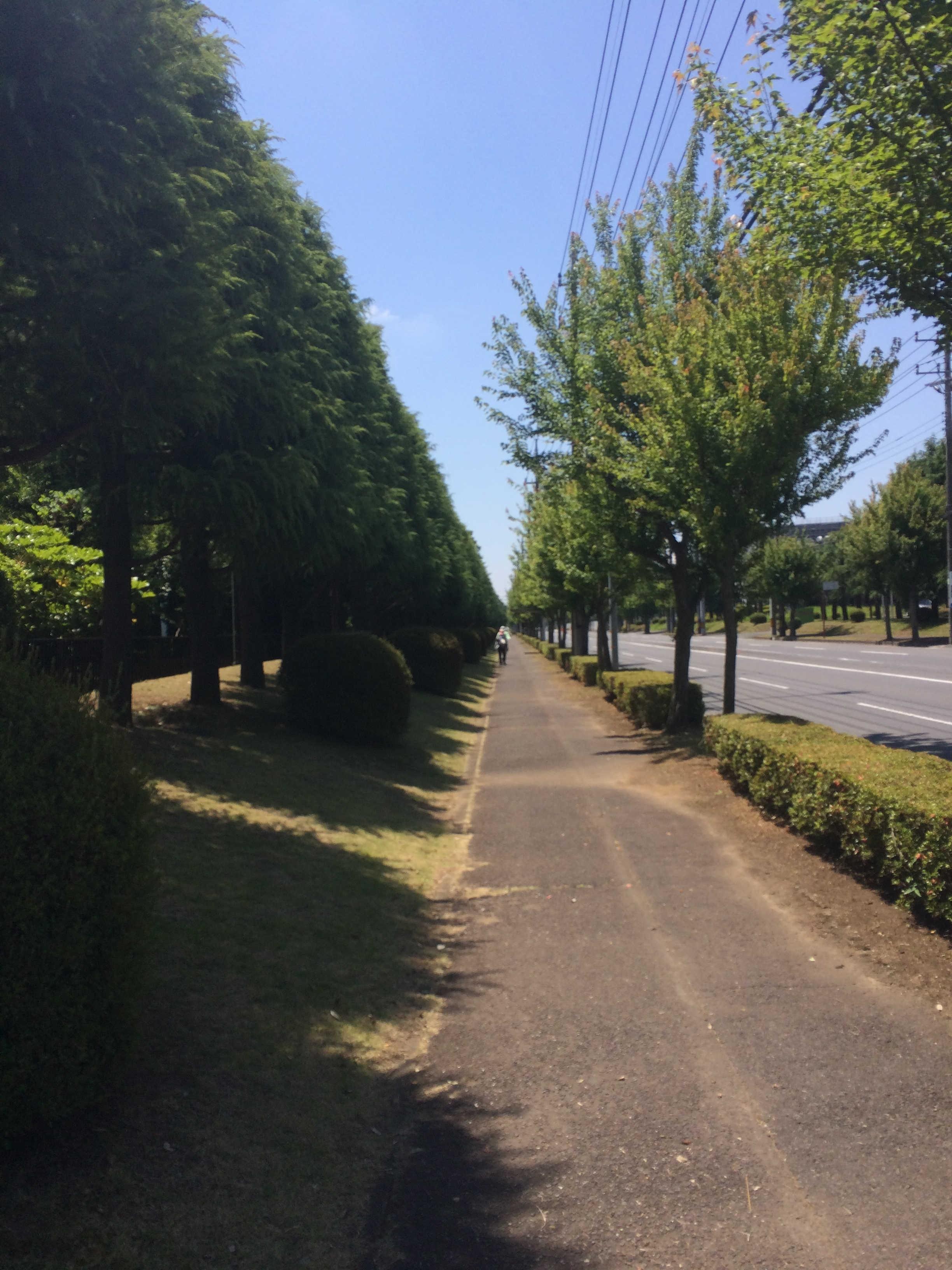 浜松ホトニクス㈱筑波研究所