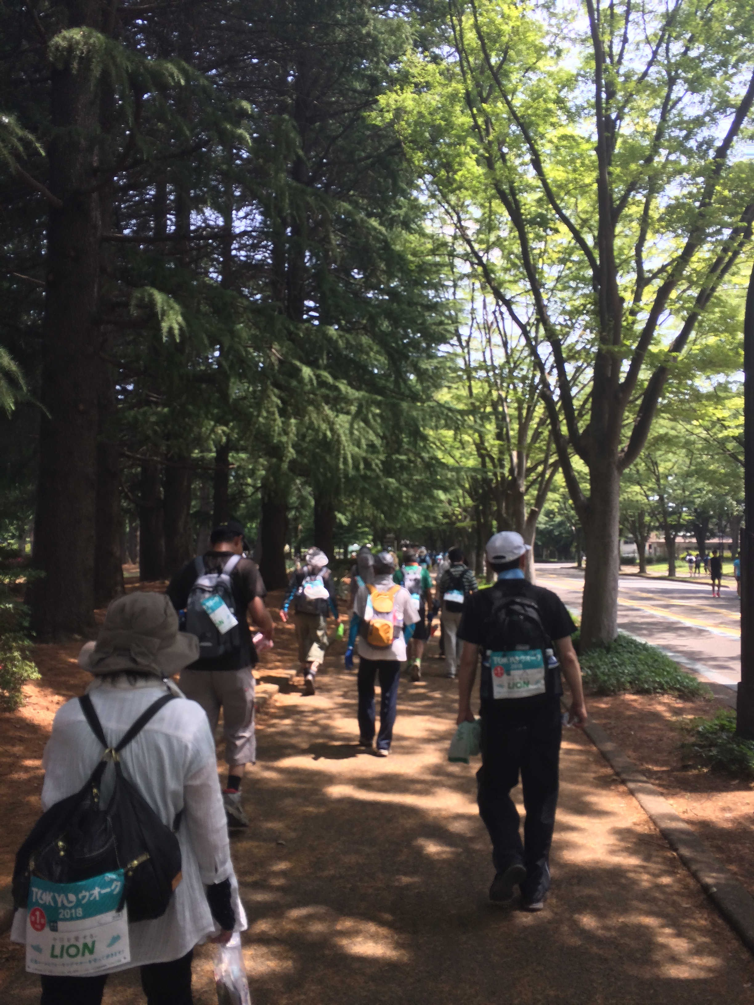 駒沢オリンピック公園中央広場(ゴール)