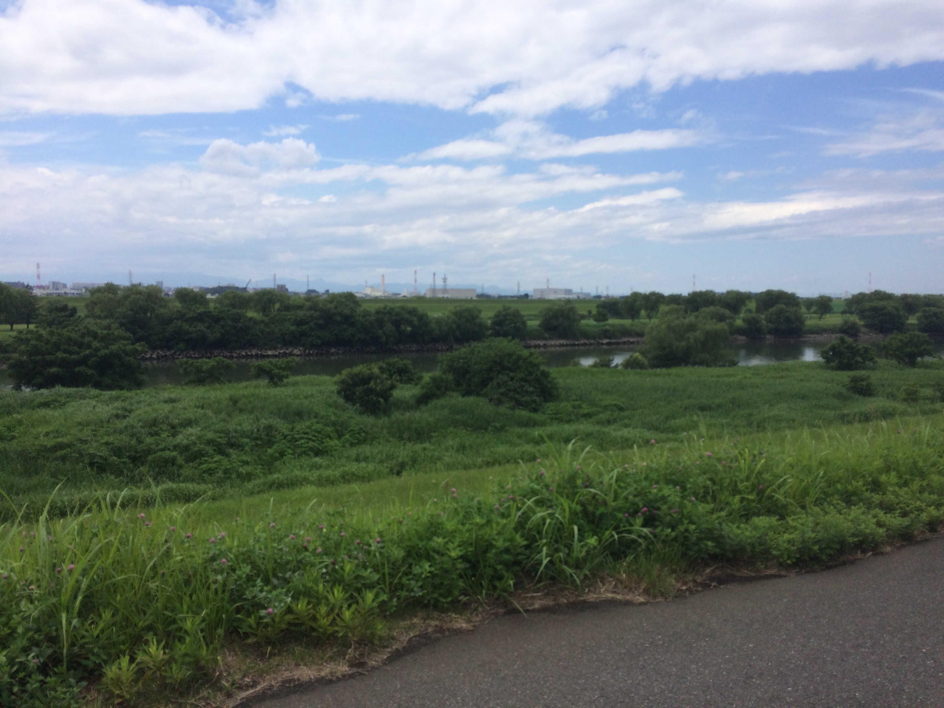 荒川堤遊歩道