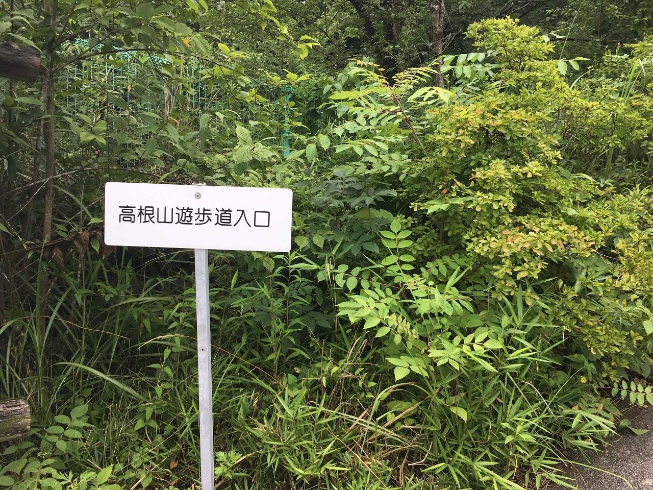 高根山遊歩道入口
