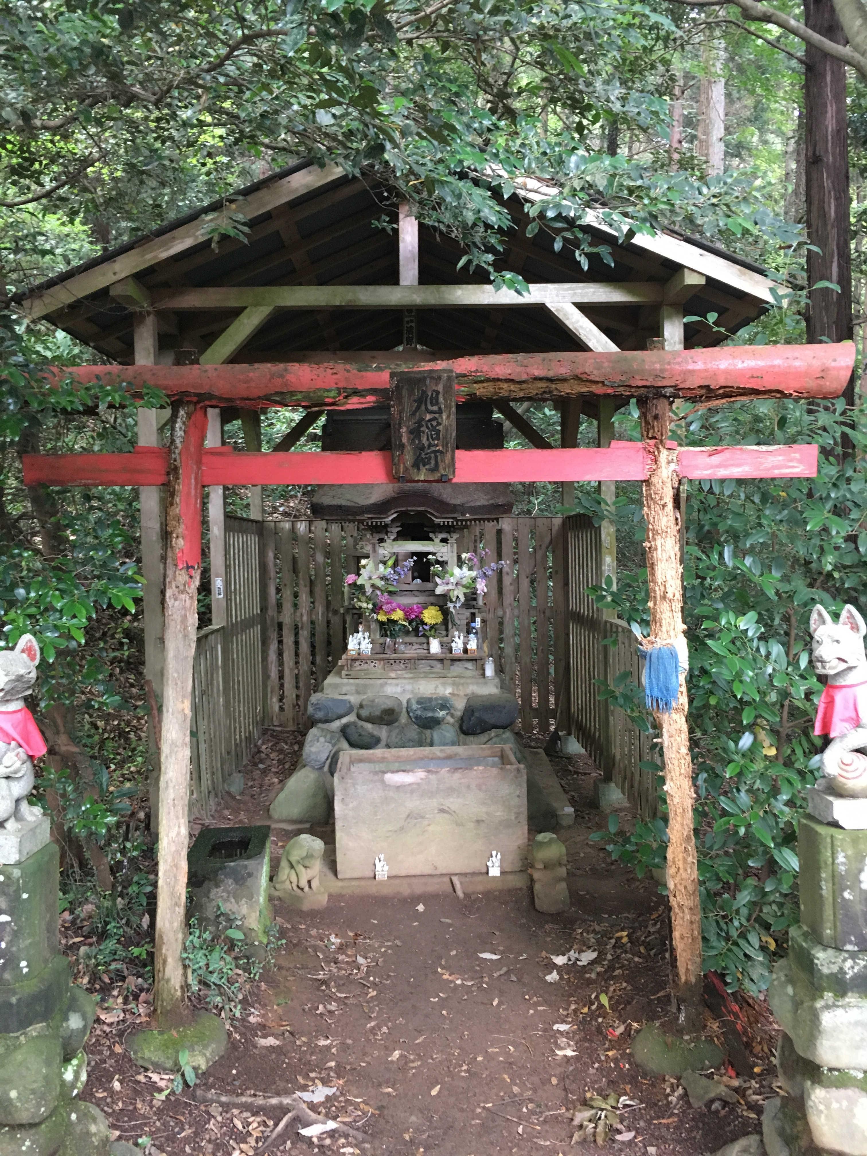 稲荷山コース登山道
