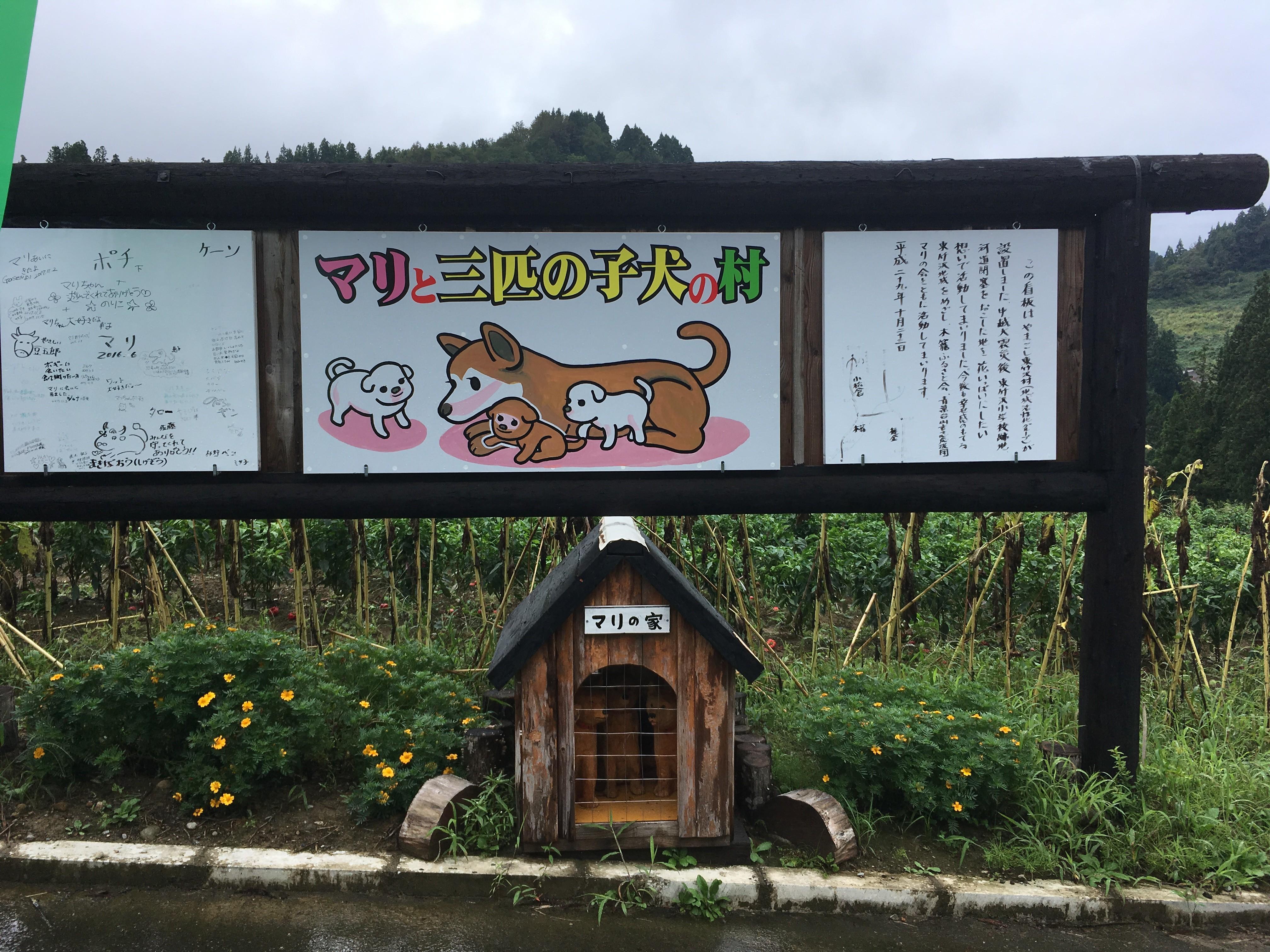山古志東竹沢周辺