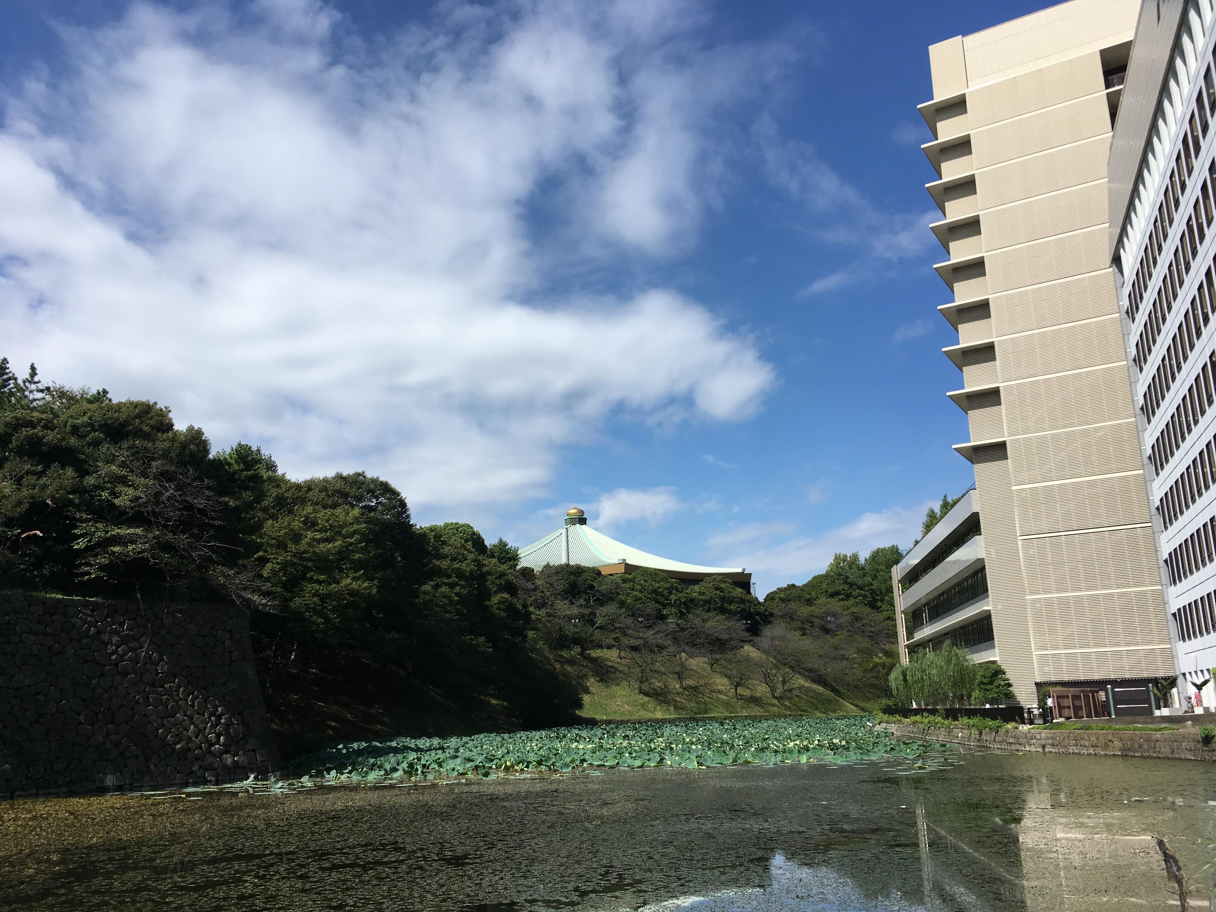 清水門から日本武道館眺める