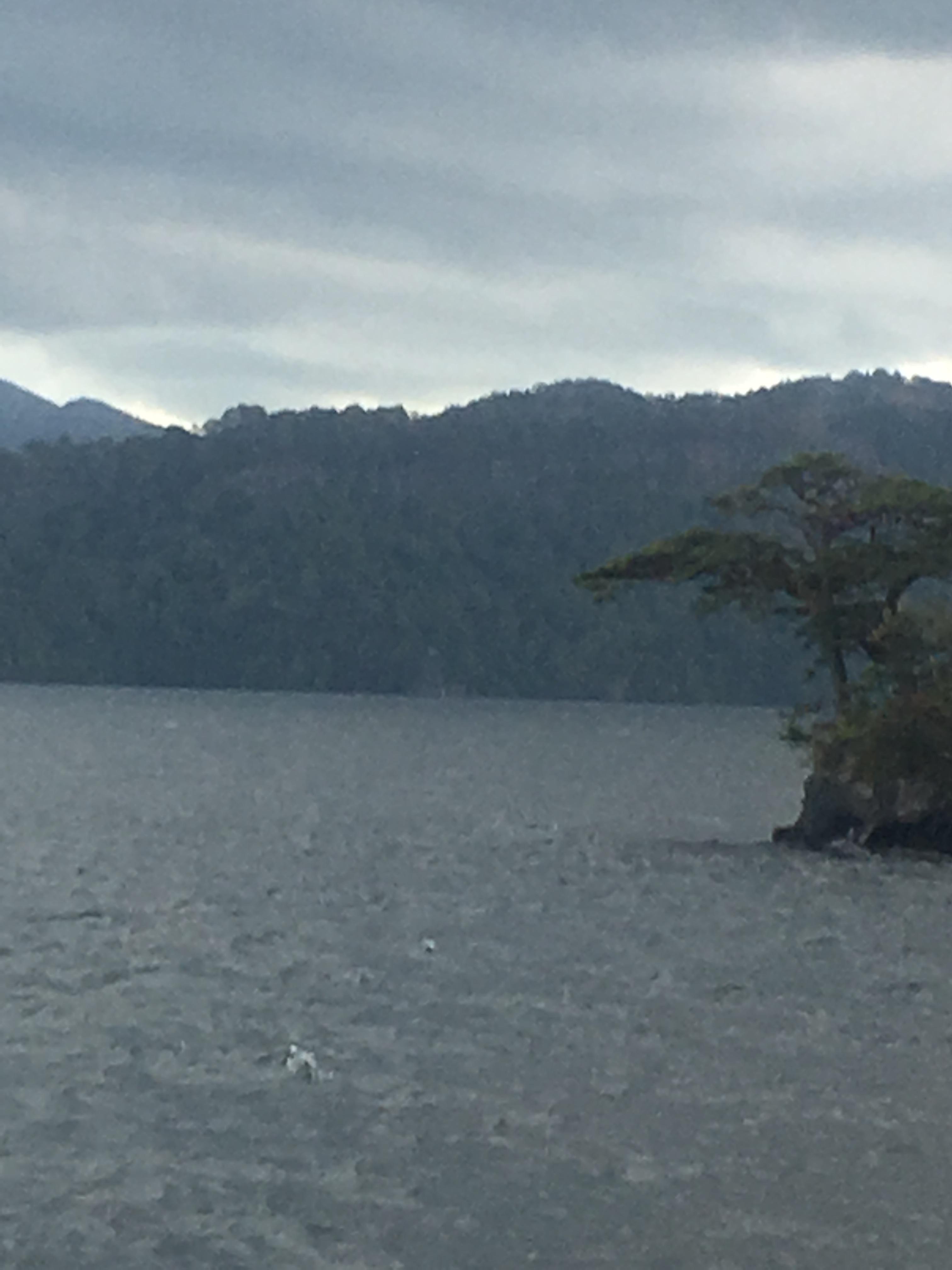十和田湖遊覧船船首から中山半島突端