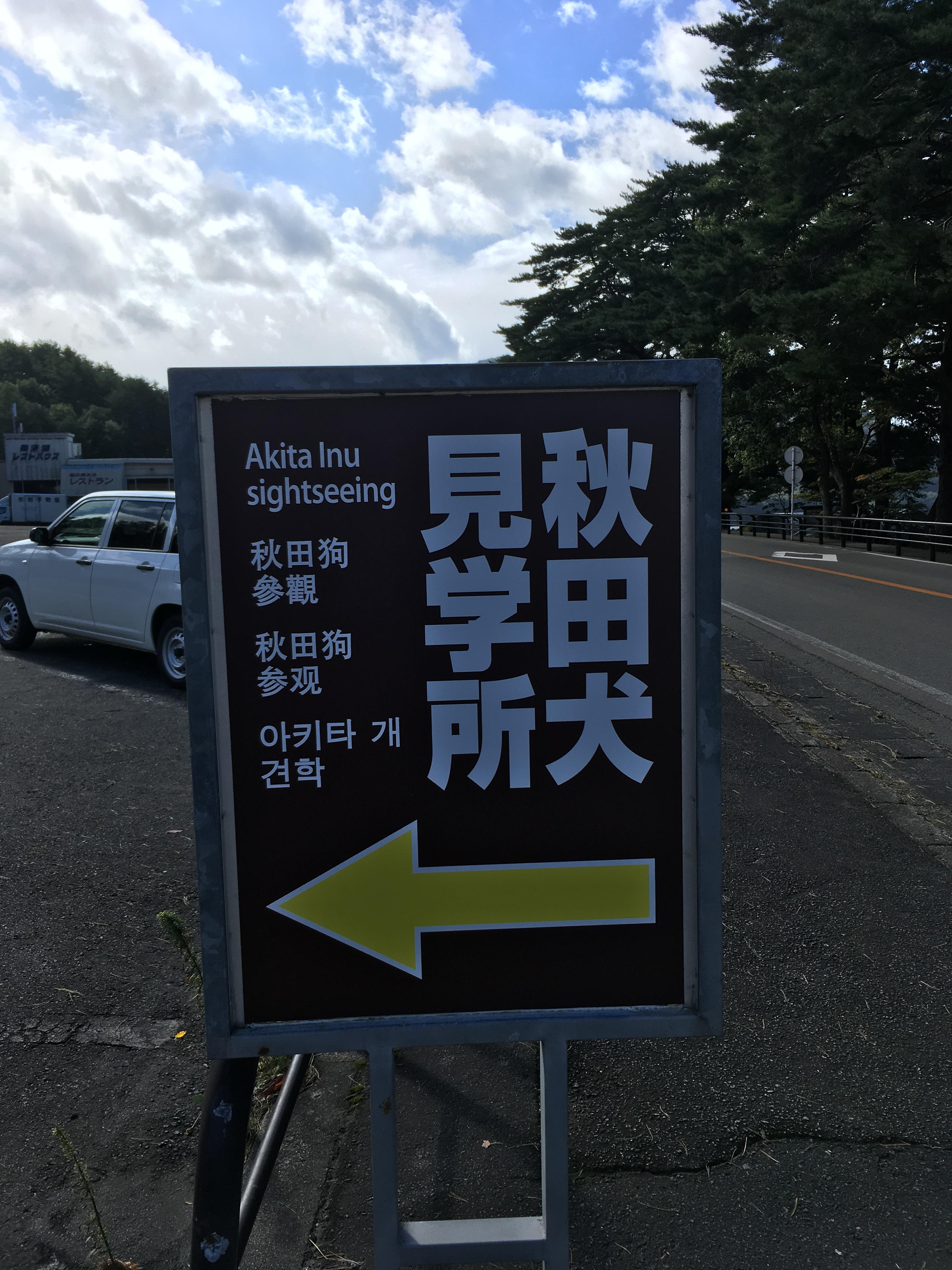 秋田犬見学所
