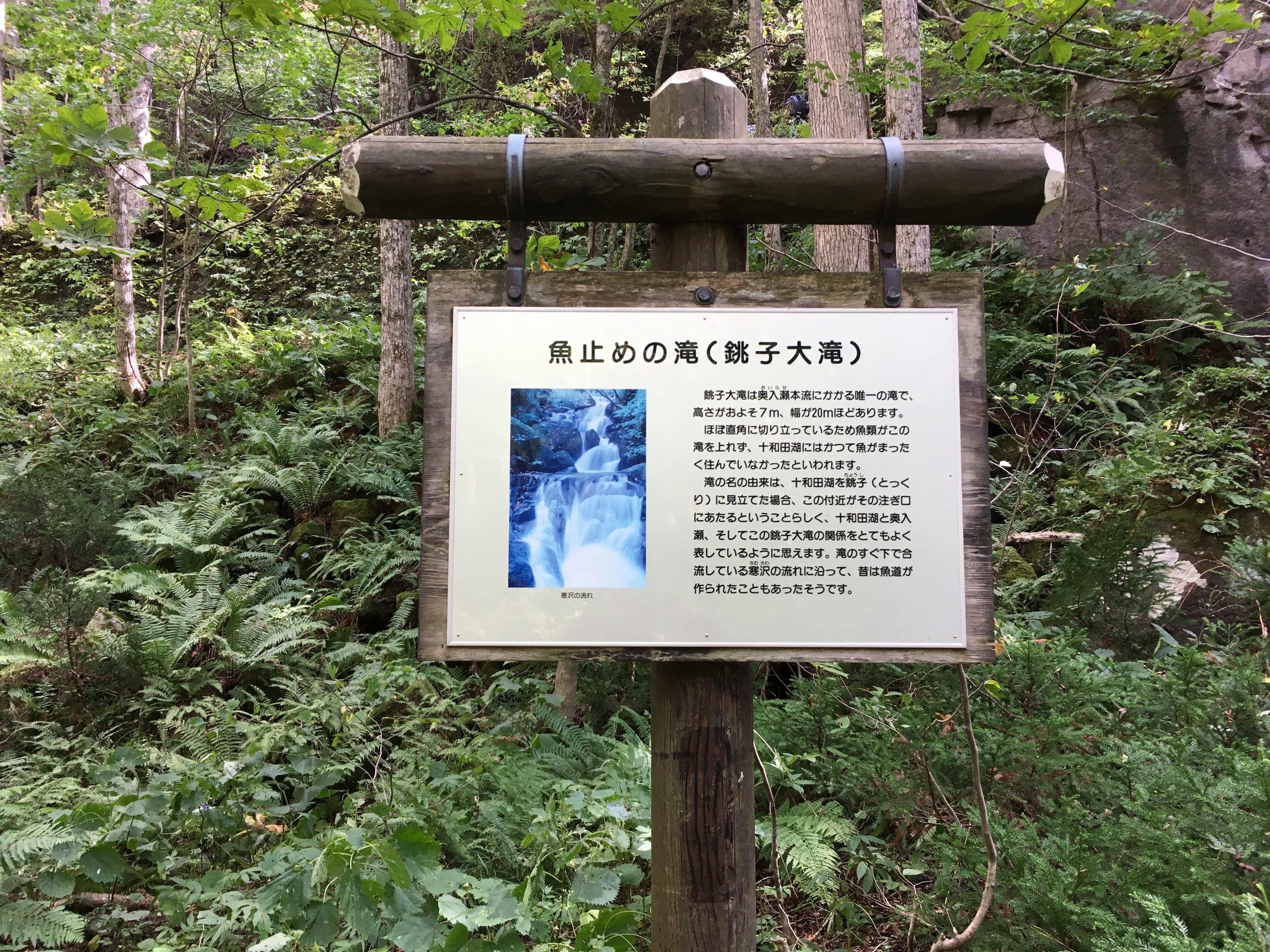 魚止めの滝(銚子大橋)