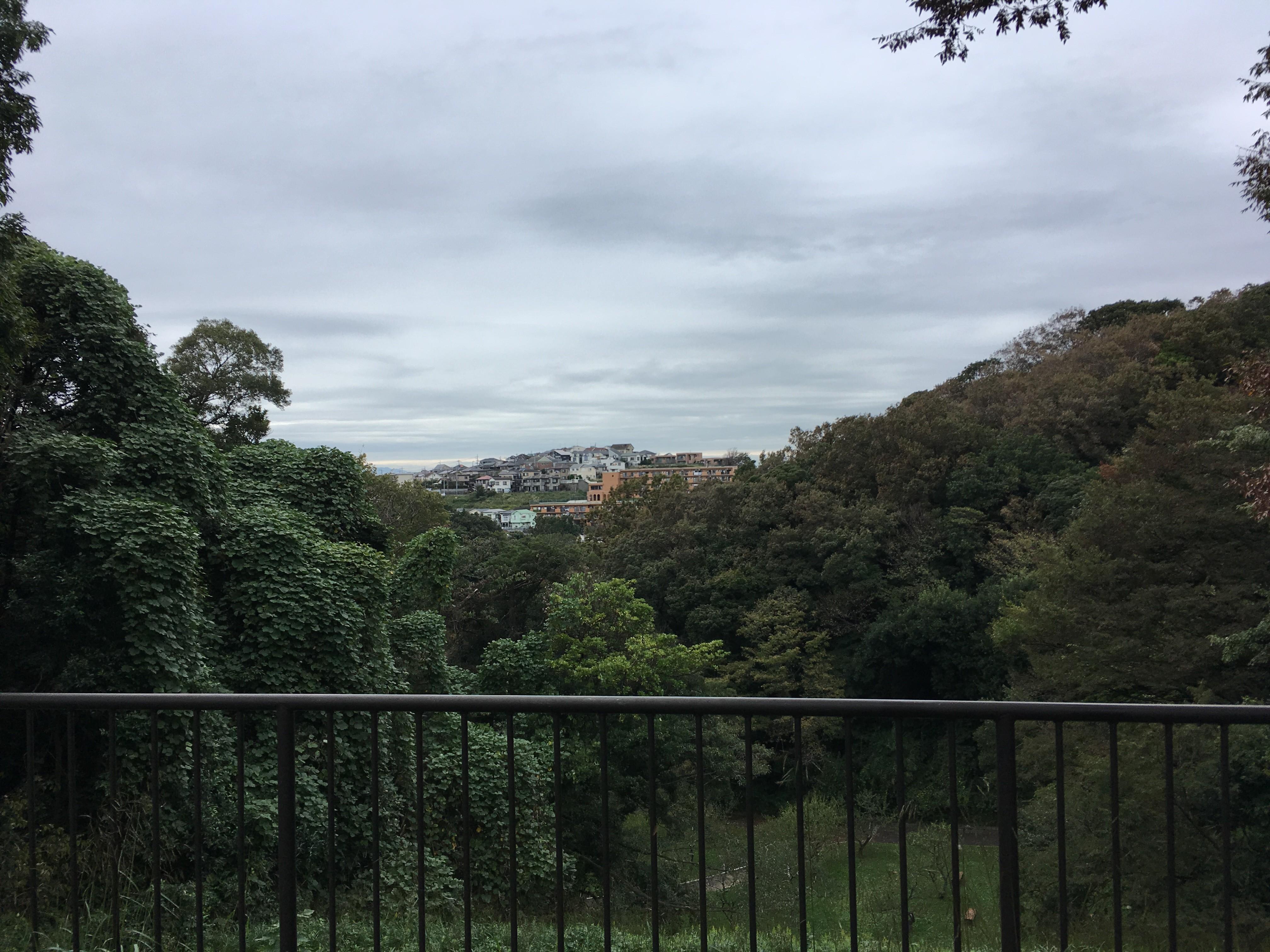 久良岐公園から磯子市内の景観