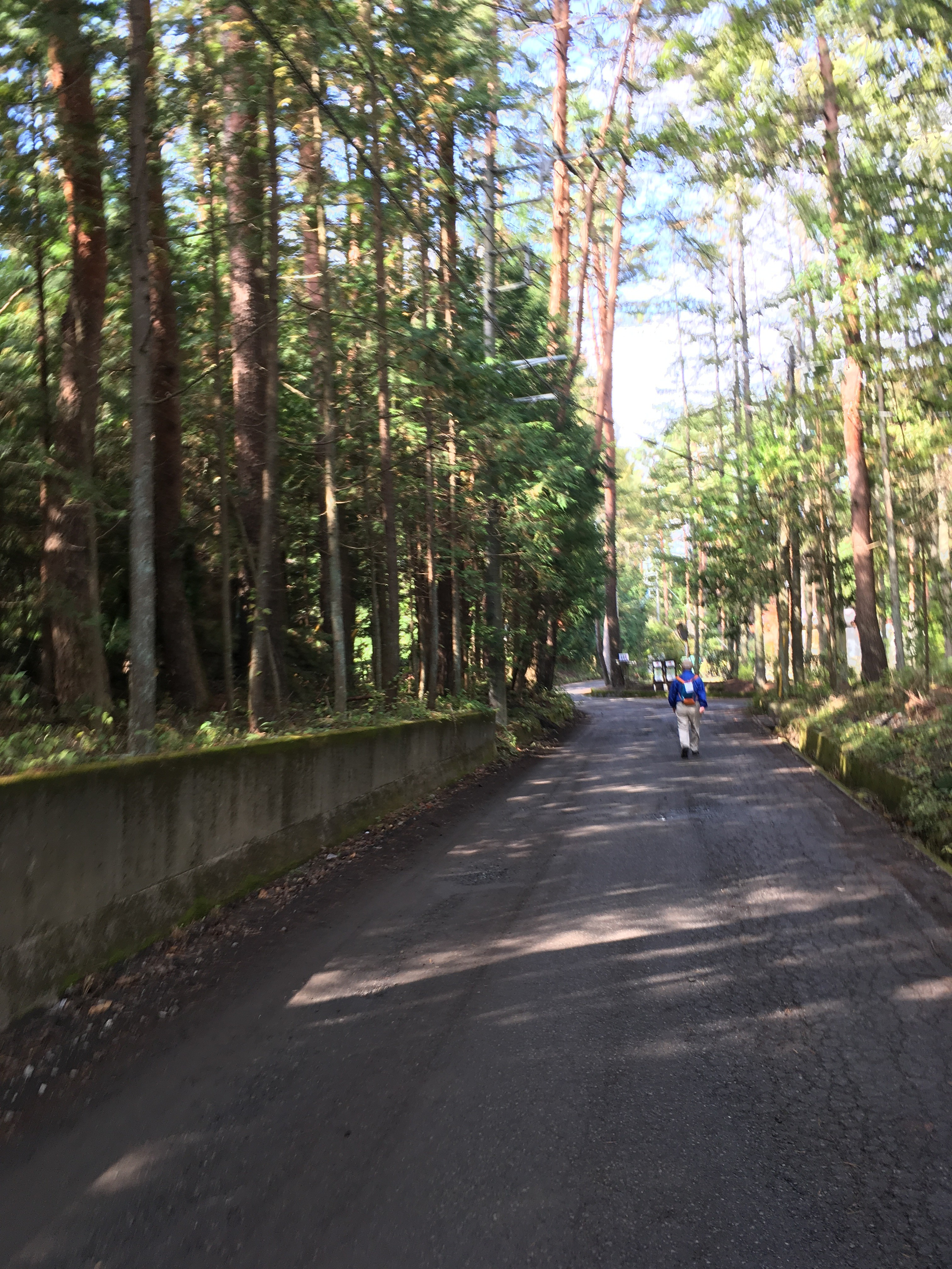 富士河口湖町小立5256−7