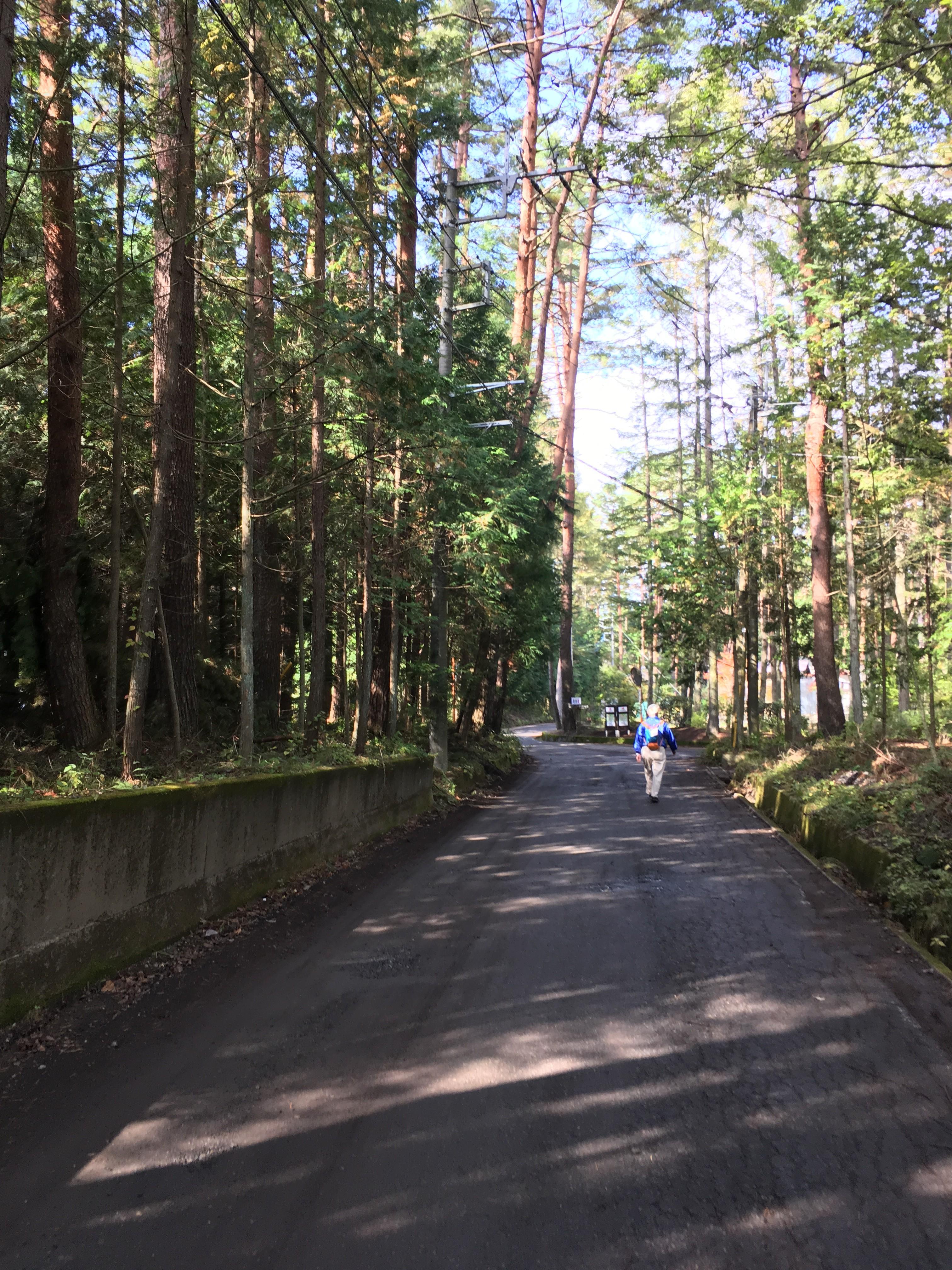 富士河口湖町小立5256