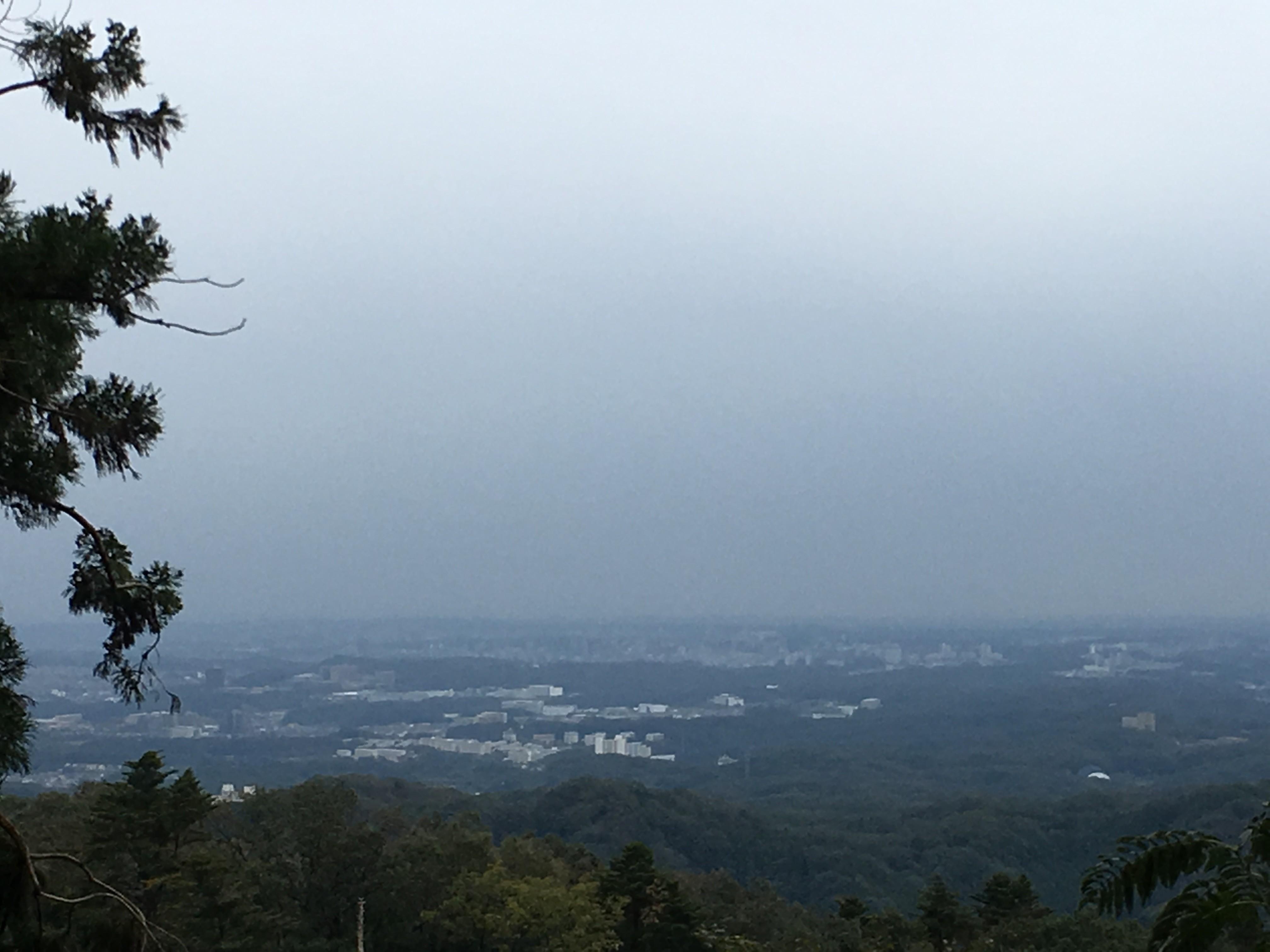 八王寺市街地風景