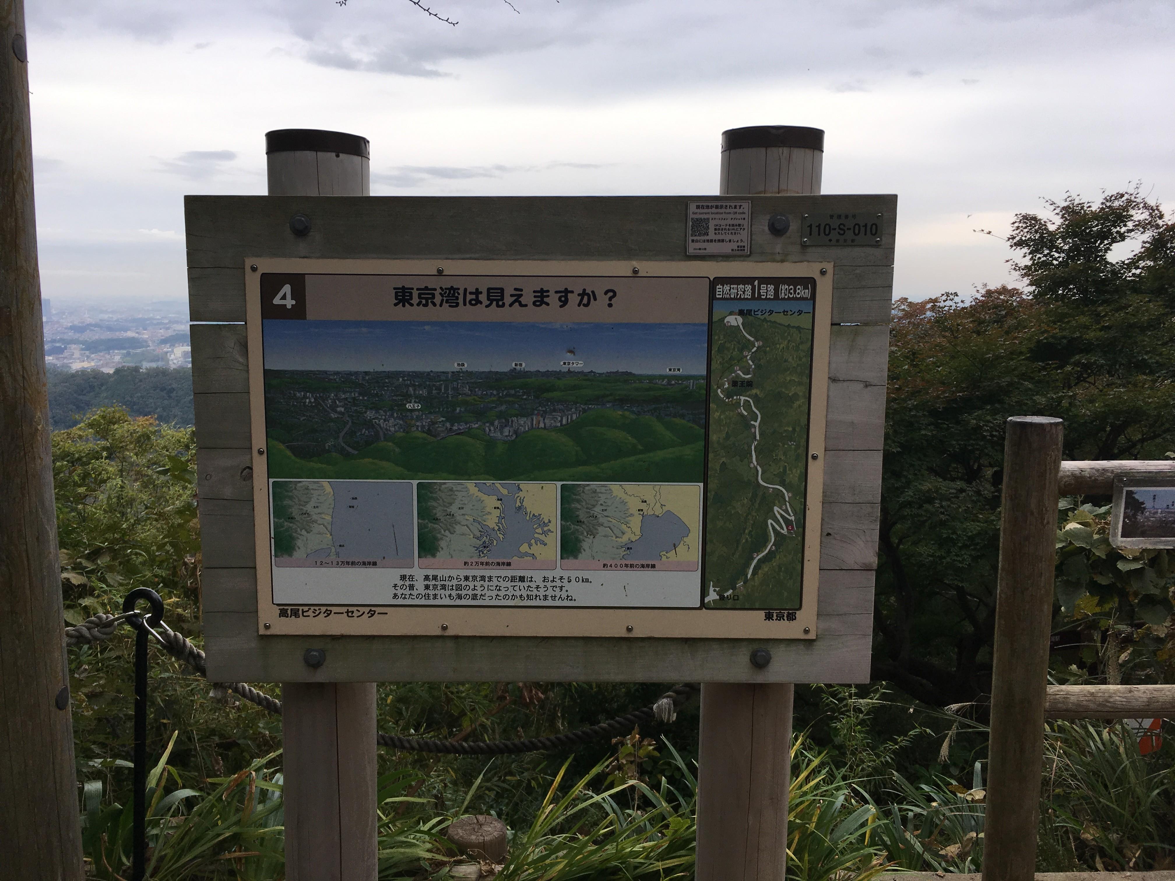 城見台から東京湾は見えますか?