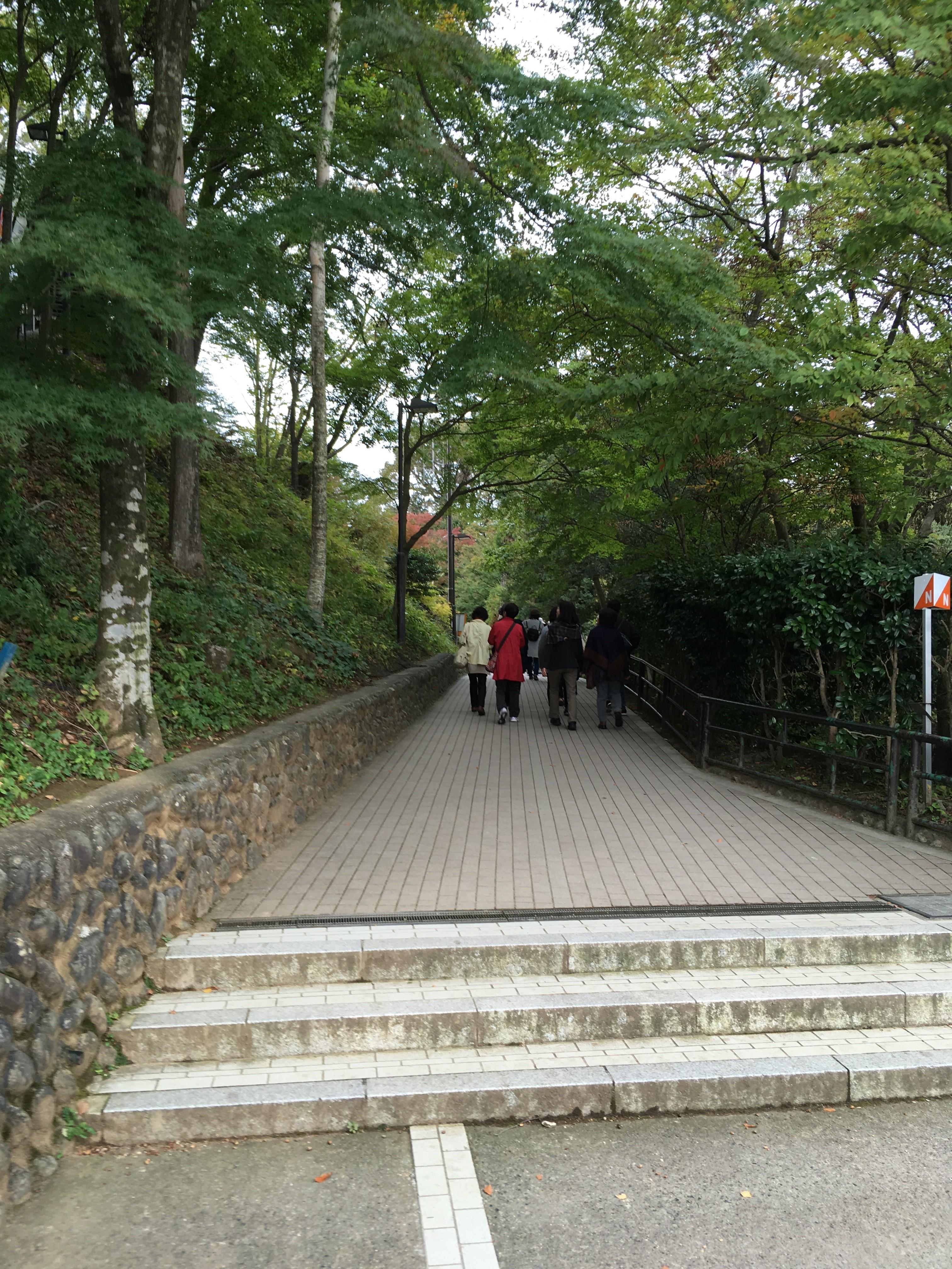高尾山ビアマウント下遊歩道